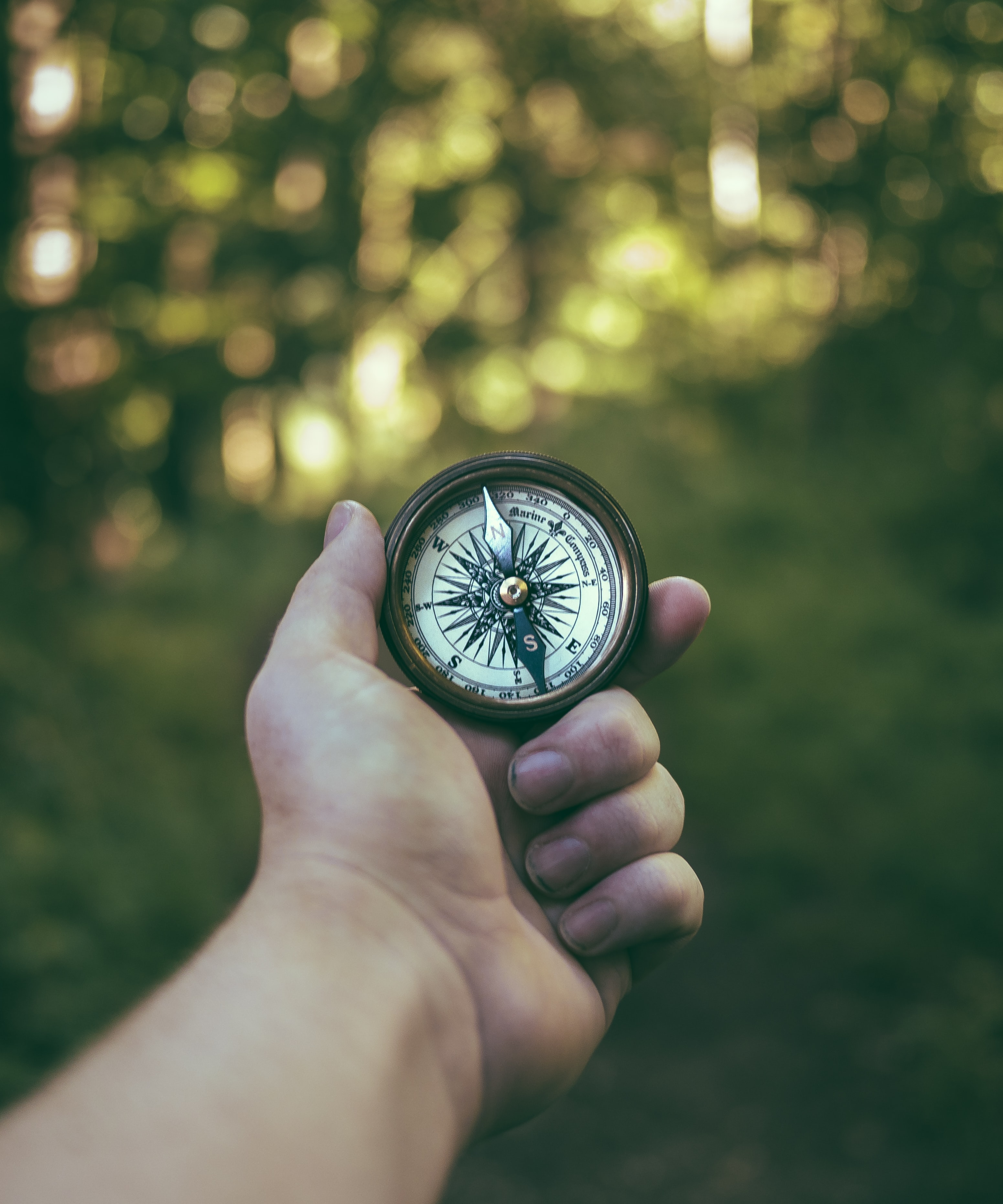 A person's hand holding and old-fashioned compass in the wilderness