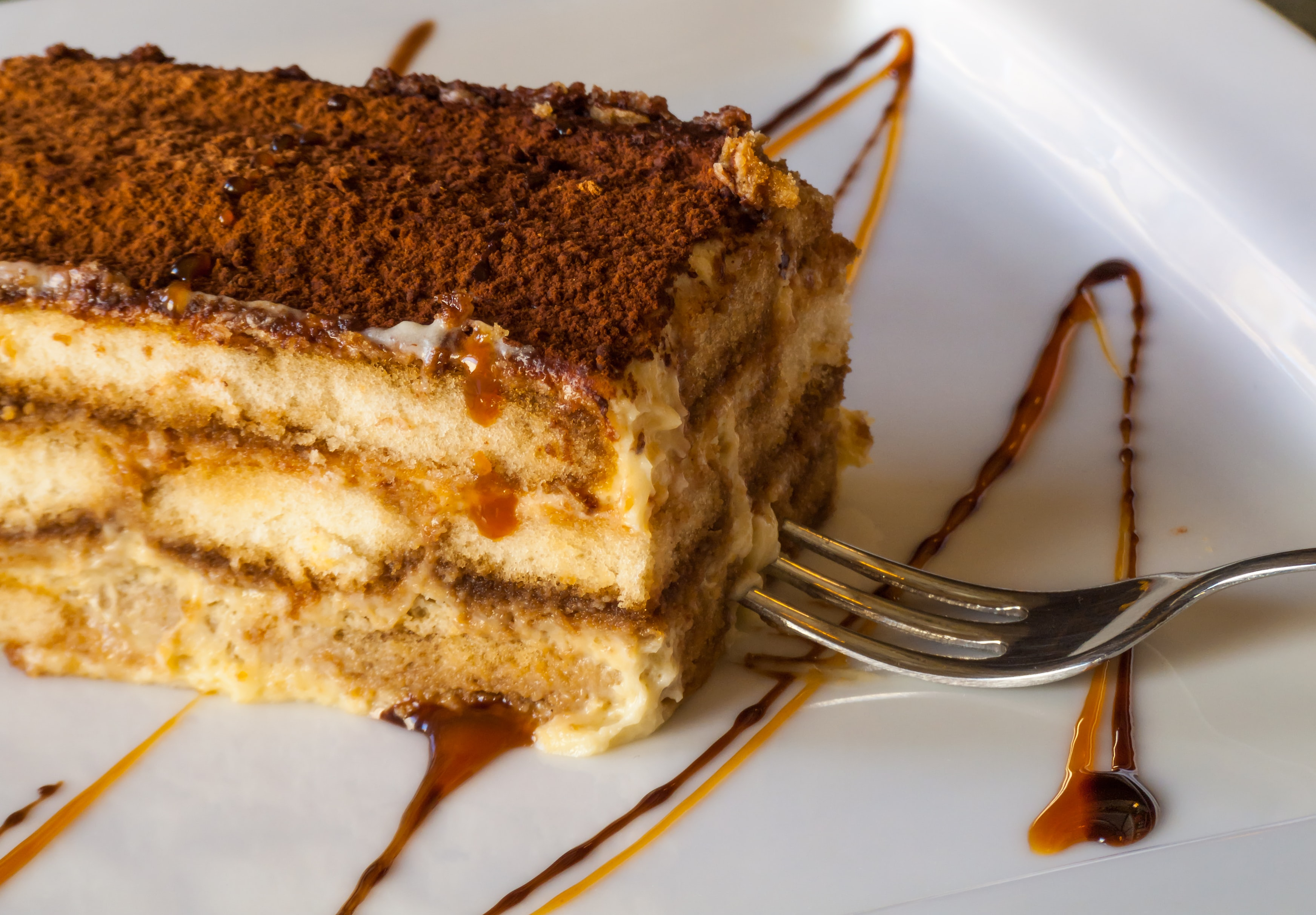 A slice of tiramisu drizzled with caramel besides a steel fork