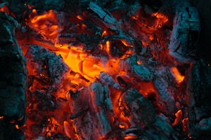 burned firewood
