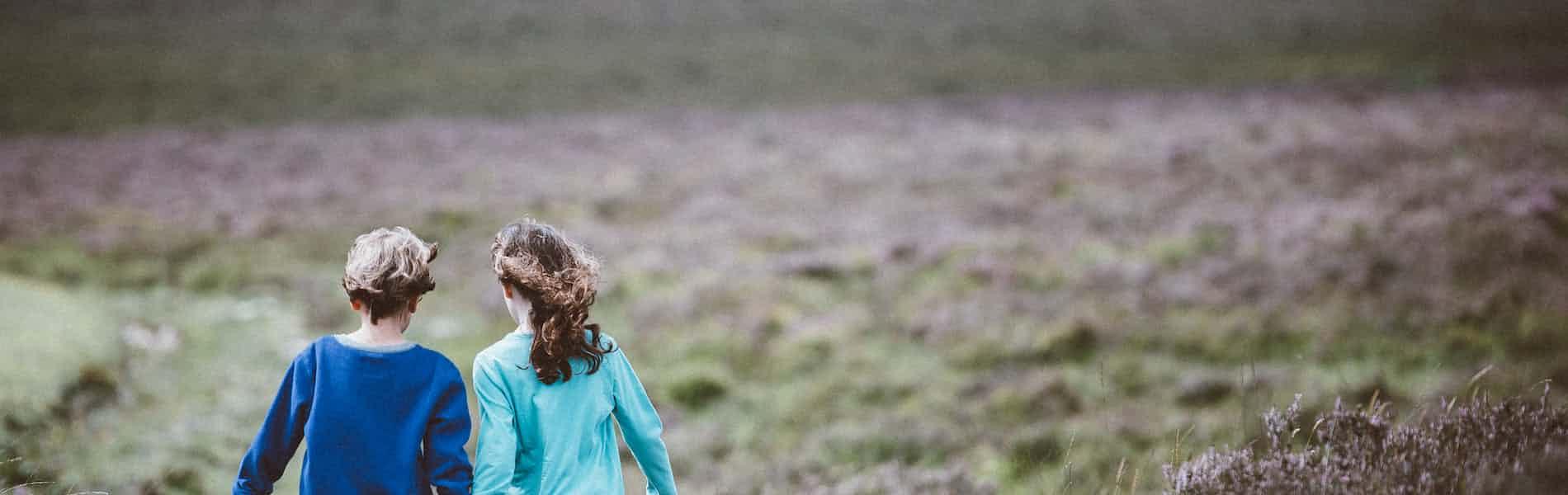 סקירת פרק מתוך ספרן של דיוויס ופראולי: Treating the Adult Survivor of Childhood Sexual Abuse פרק 5: חשיפת הסוד ושחזור זיכרונות