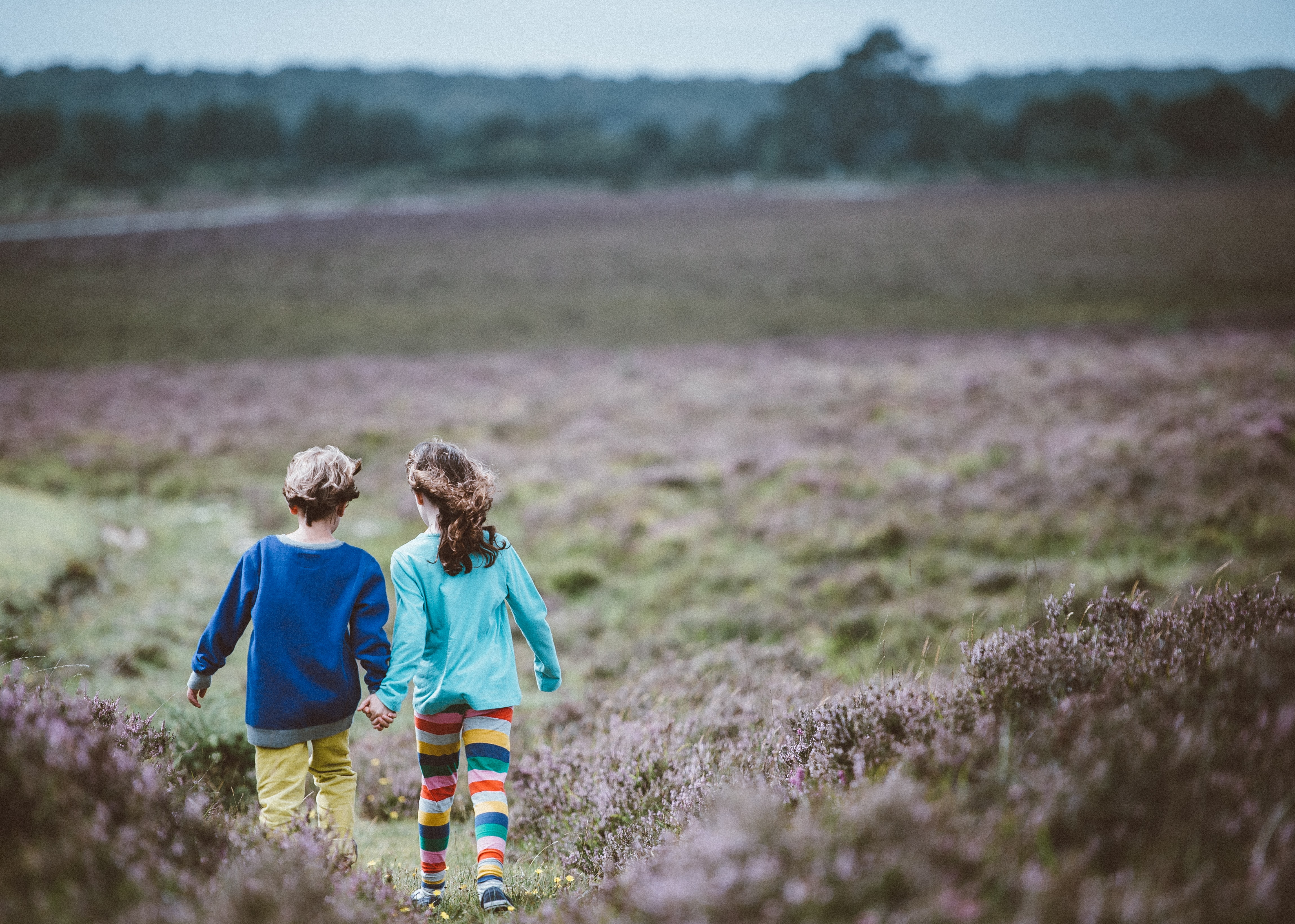two children holding hands while walking in the middle of the fields