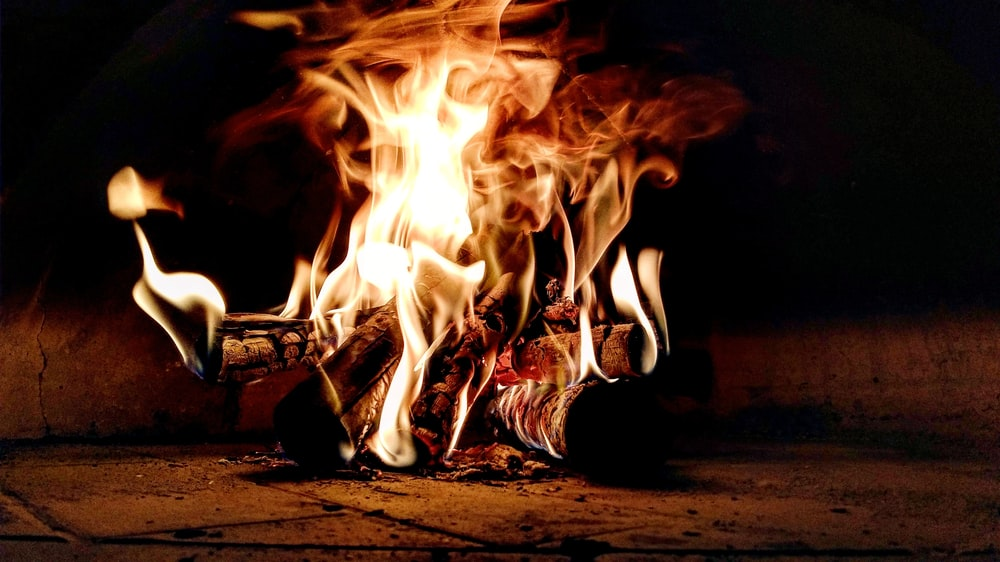 low angle photography of burning wood