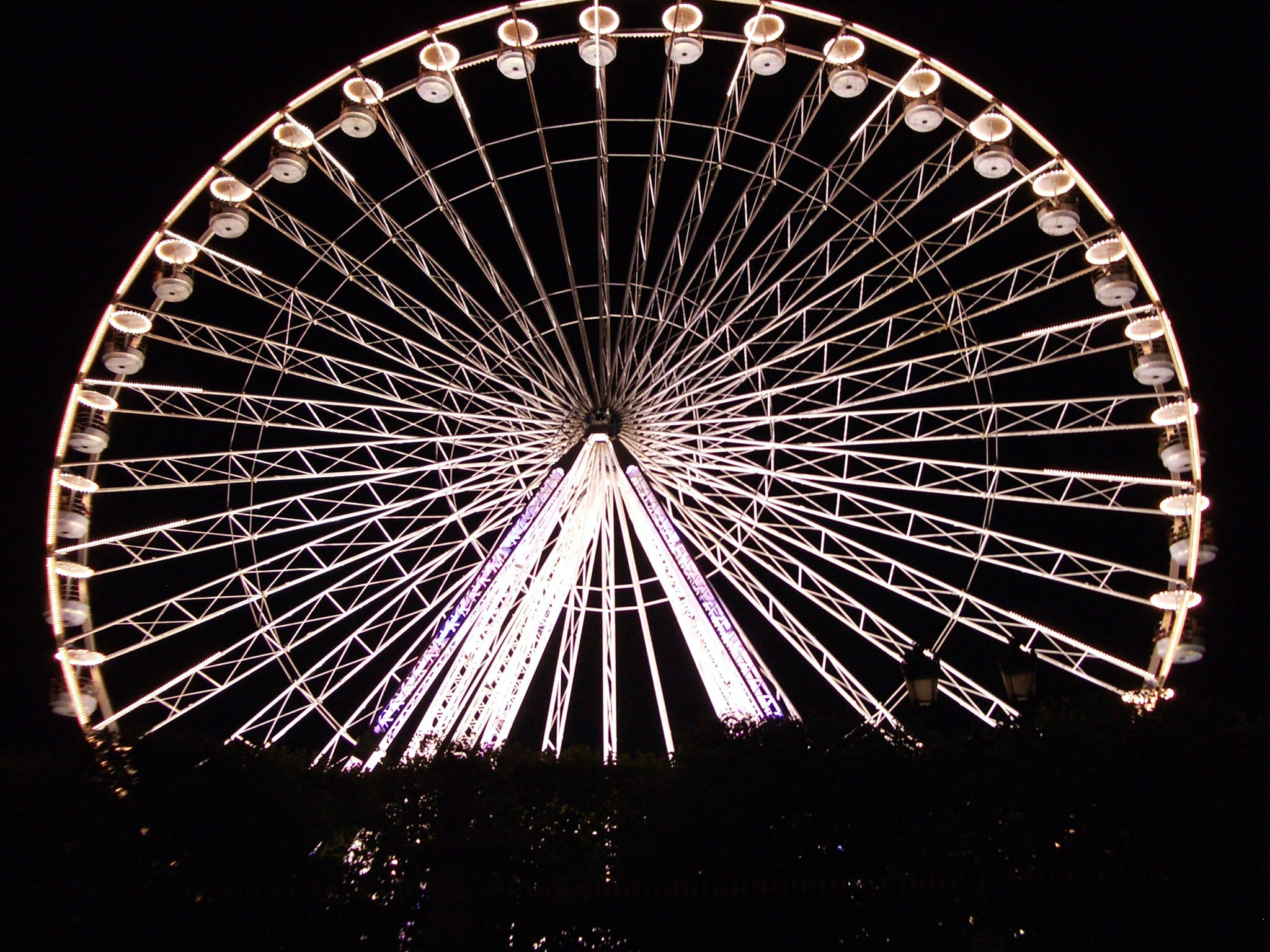 A well-lit Ferris wheel in Paris at nightfall above the silhouette of a hedge.