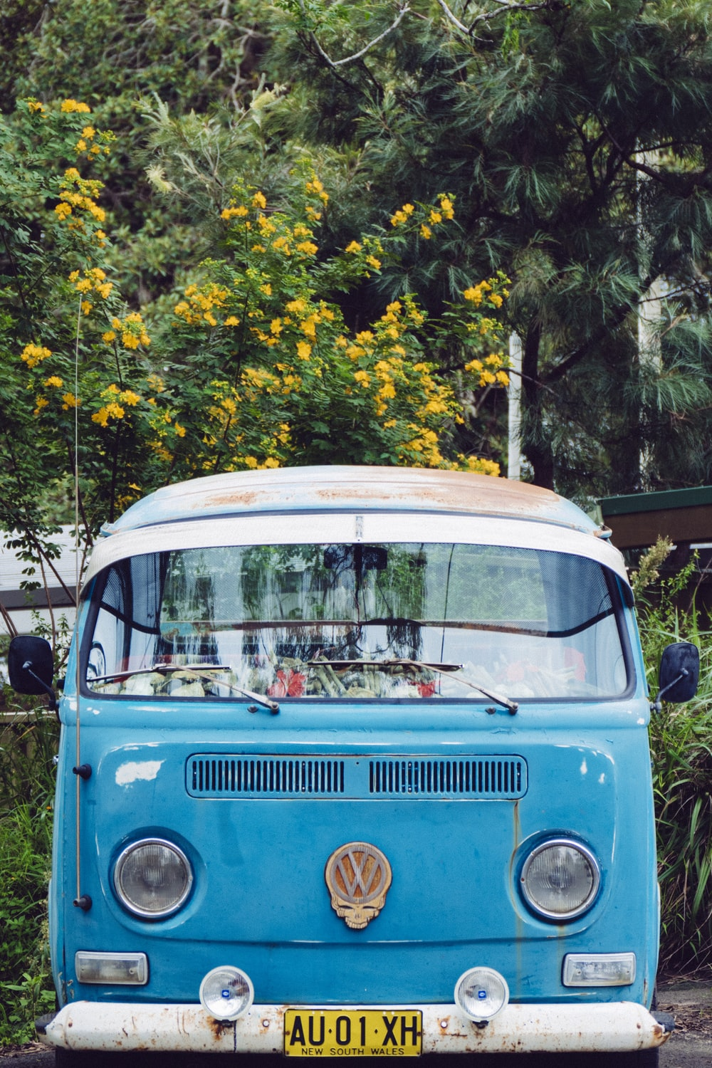 blue Volkswagen T3 in front of trees