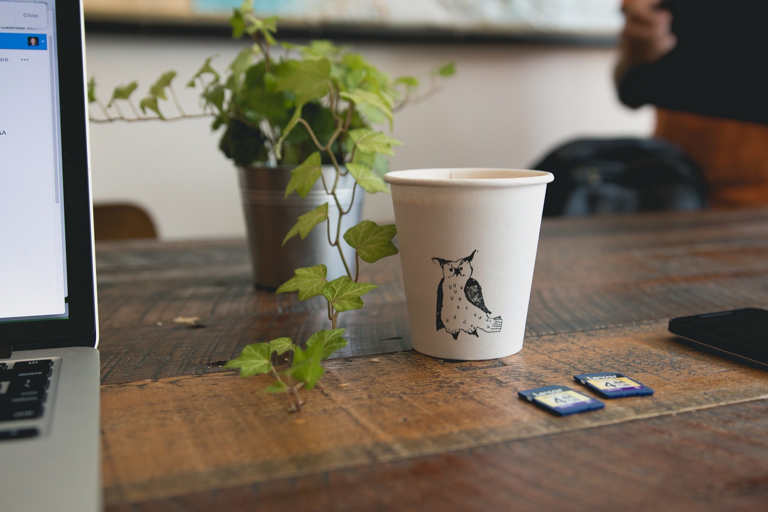 white paper cup beside green plant
