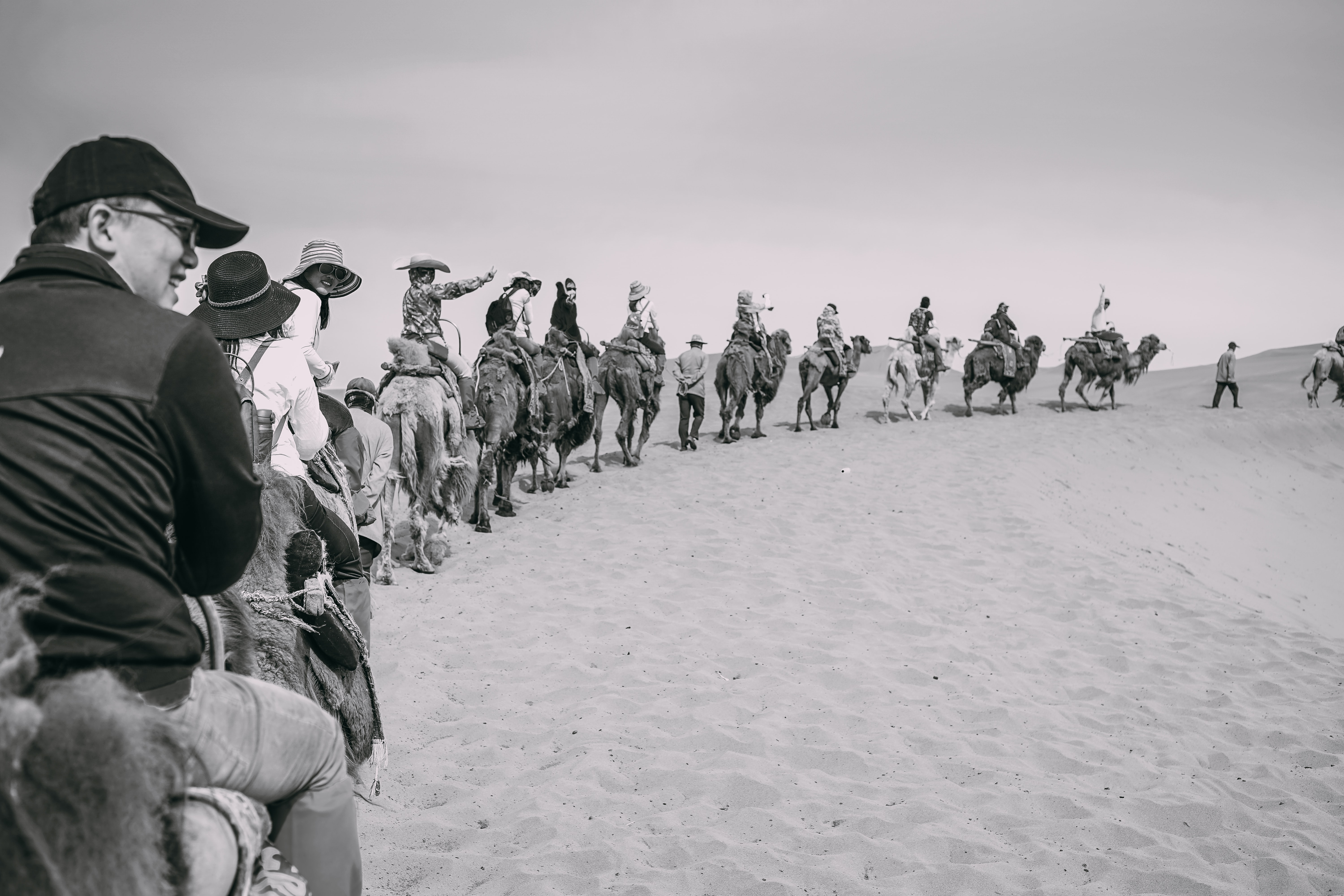 A group of tourists rides a line of camels in the desert with guides on foot
