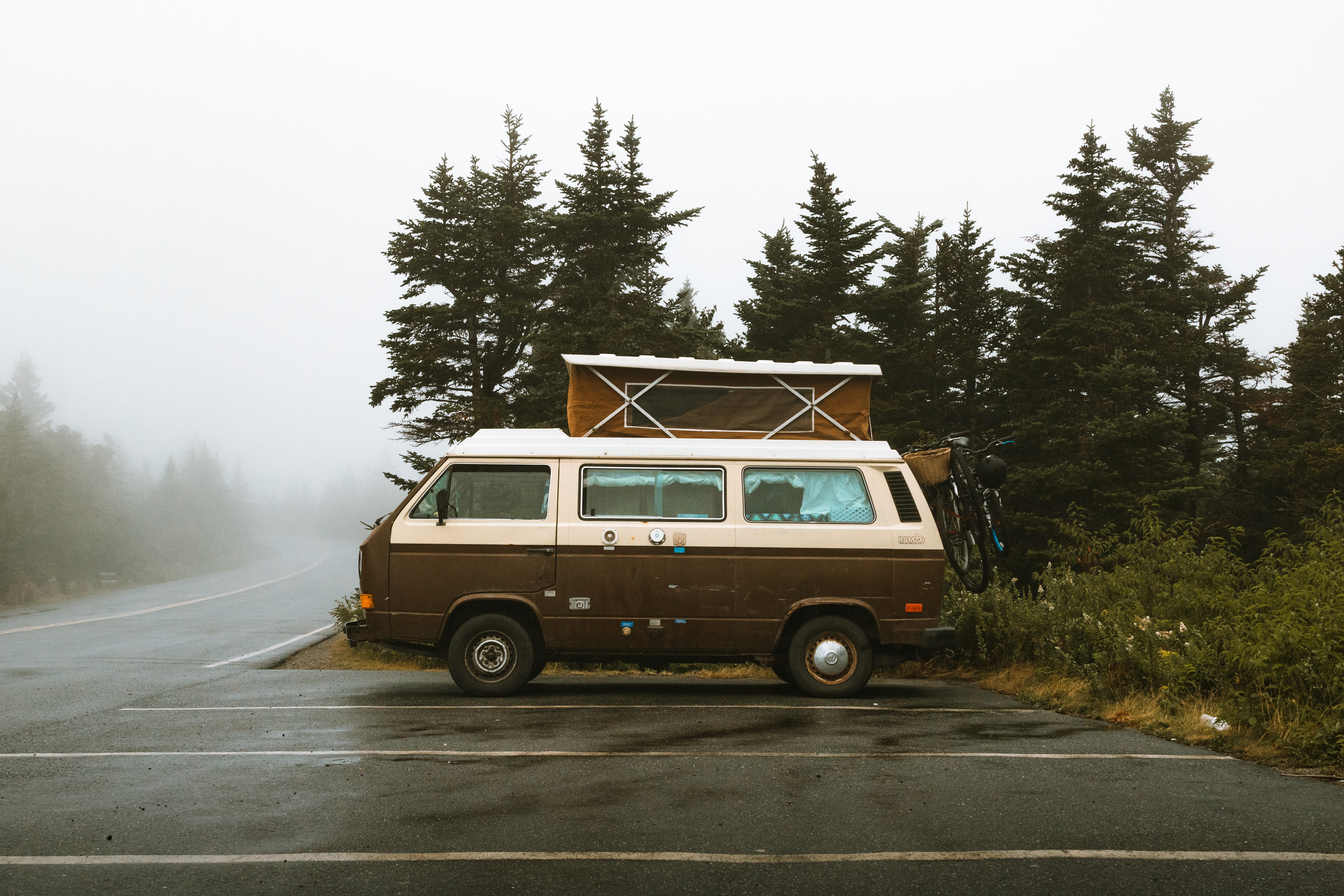 A Cadillac camper van parked in a parking lot near a forest of pine trees