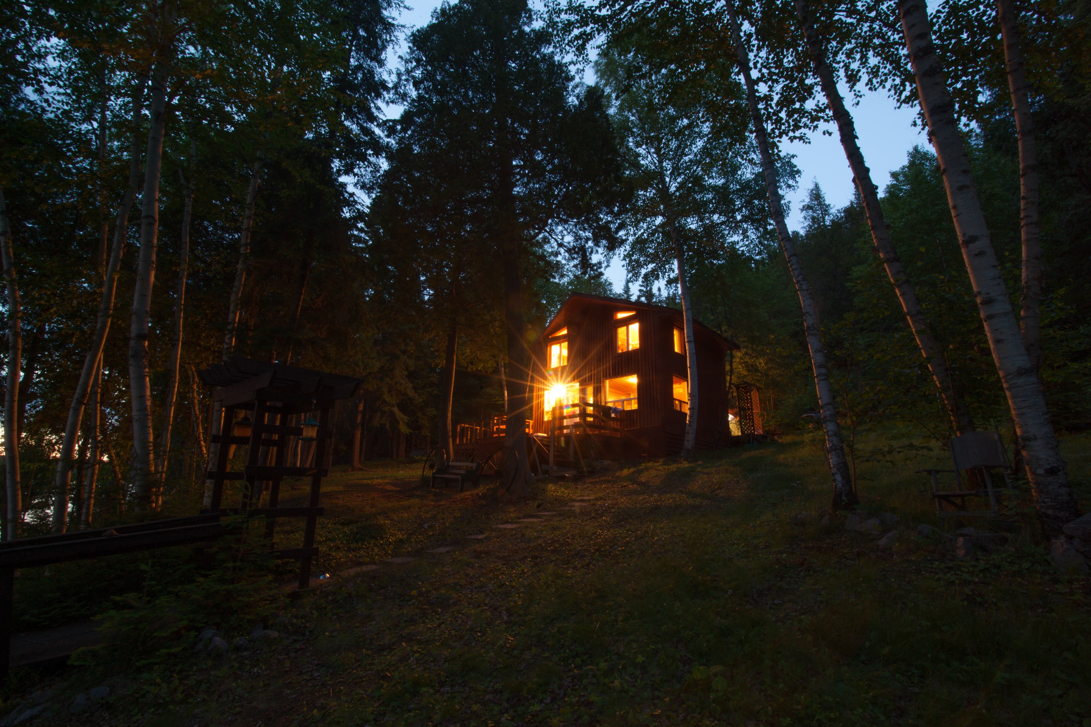 An illuminated wooden house surrounded by birch trees near Larder Lake