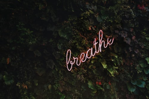 "Photo of a red neon sign with the word ""breathe"" against a garden wall"