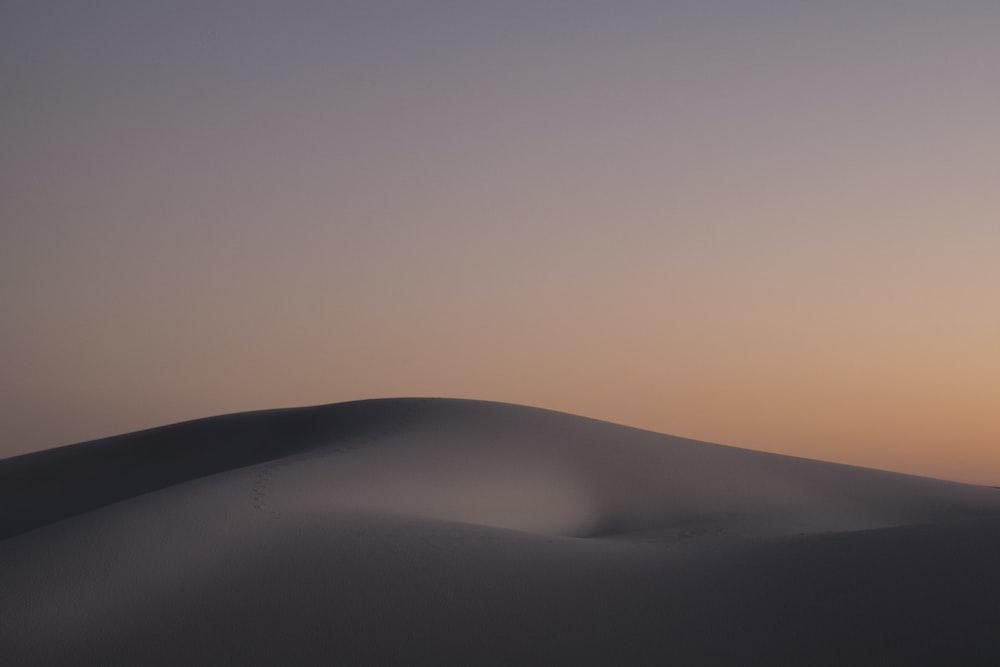 desert during golden hour