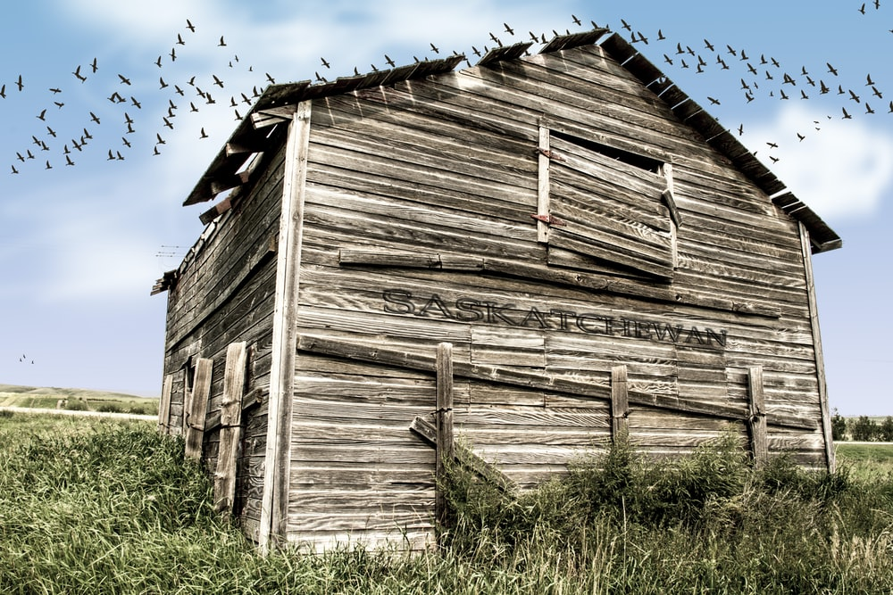 brown wooden barn during daytime