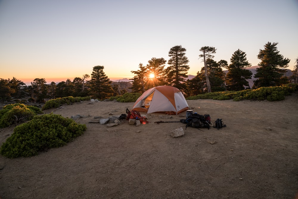 beige and orange dome tent near trees during golden hour