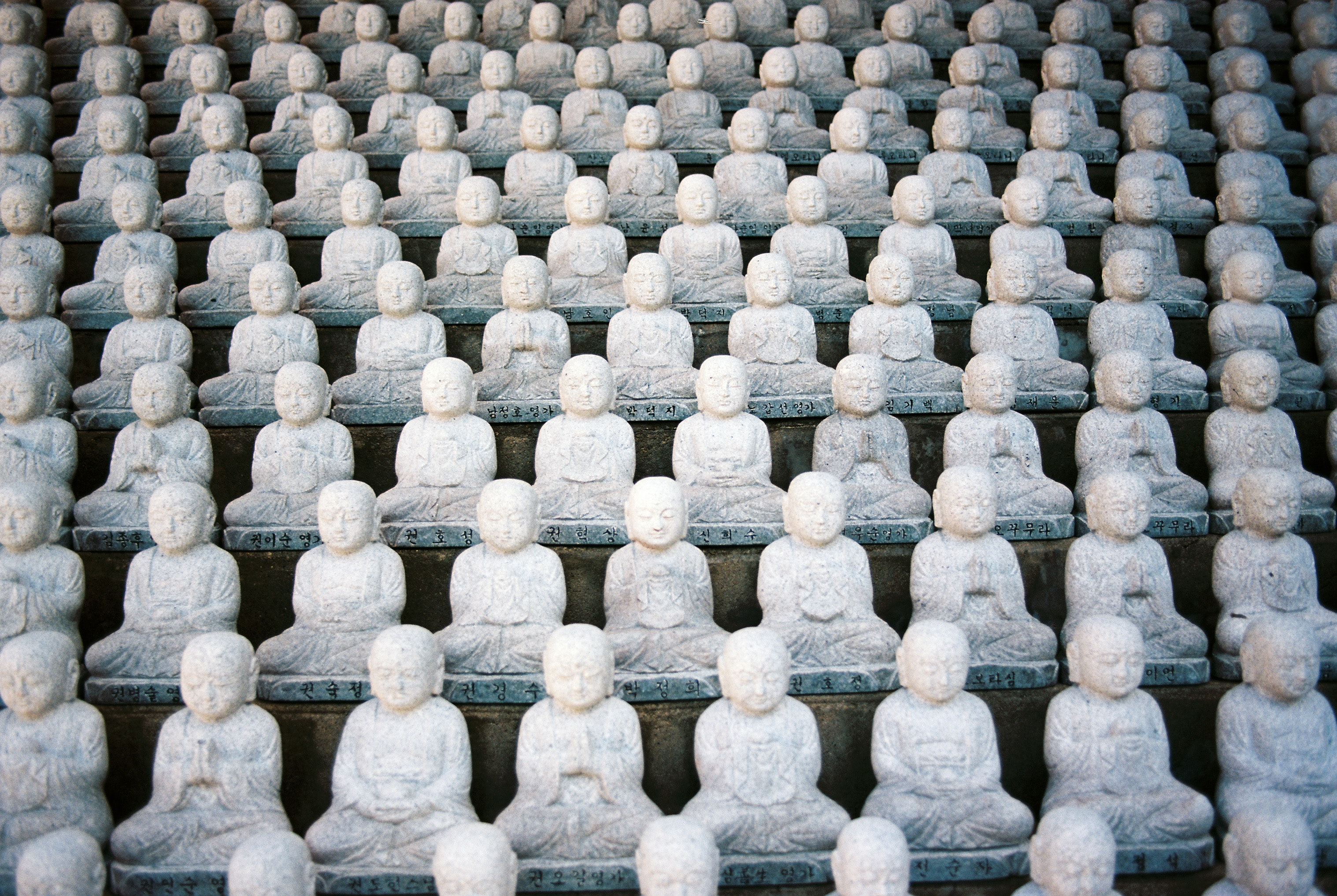 Lines of statues at a buddha temple