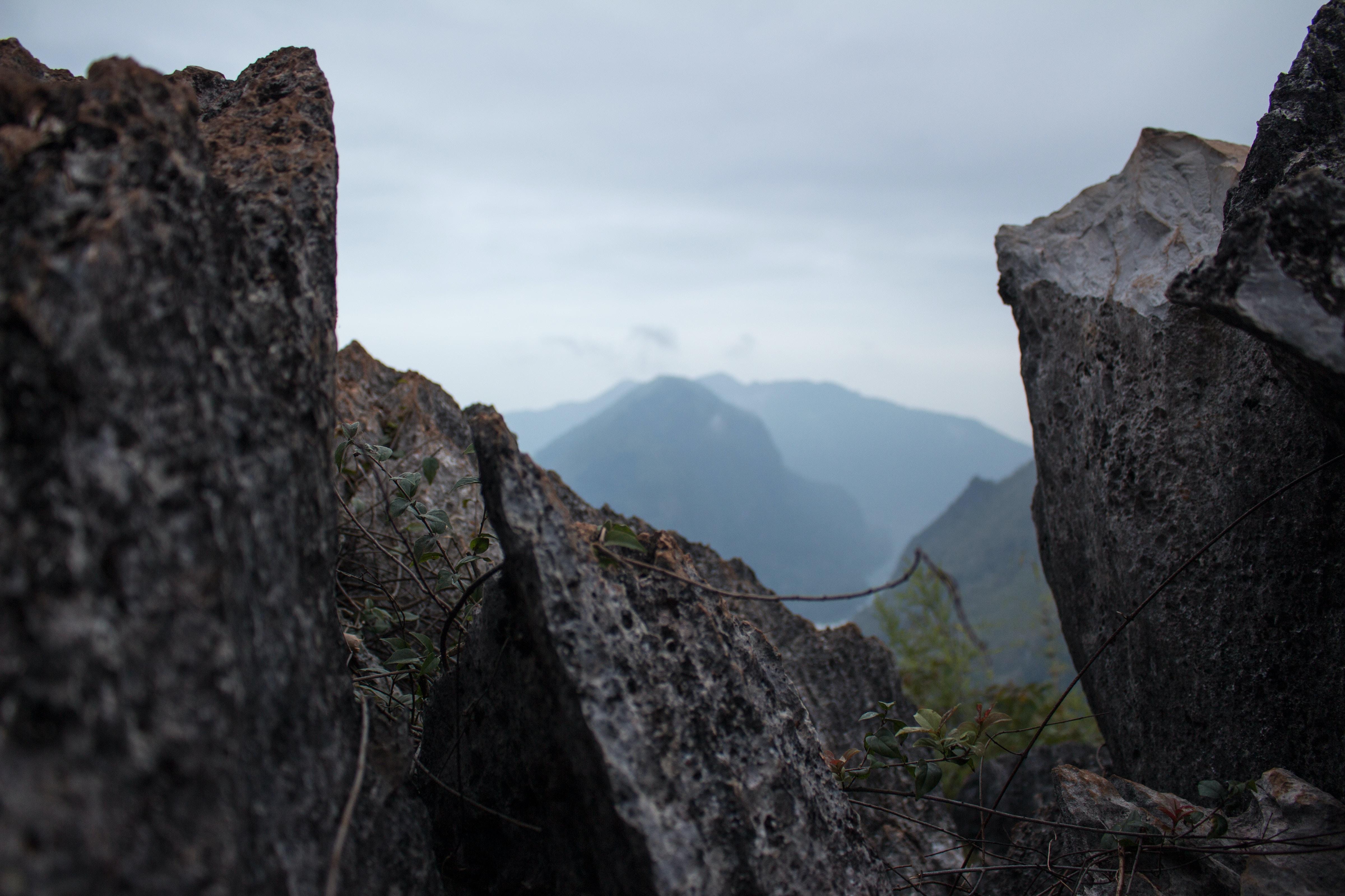 grey rock formations near green leaf plant