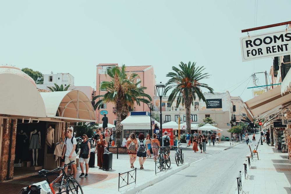 group of people walking on street near majesty palm trees