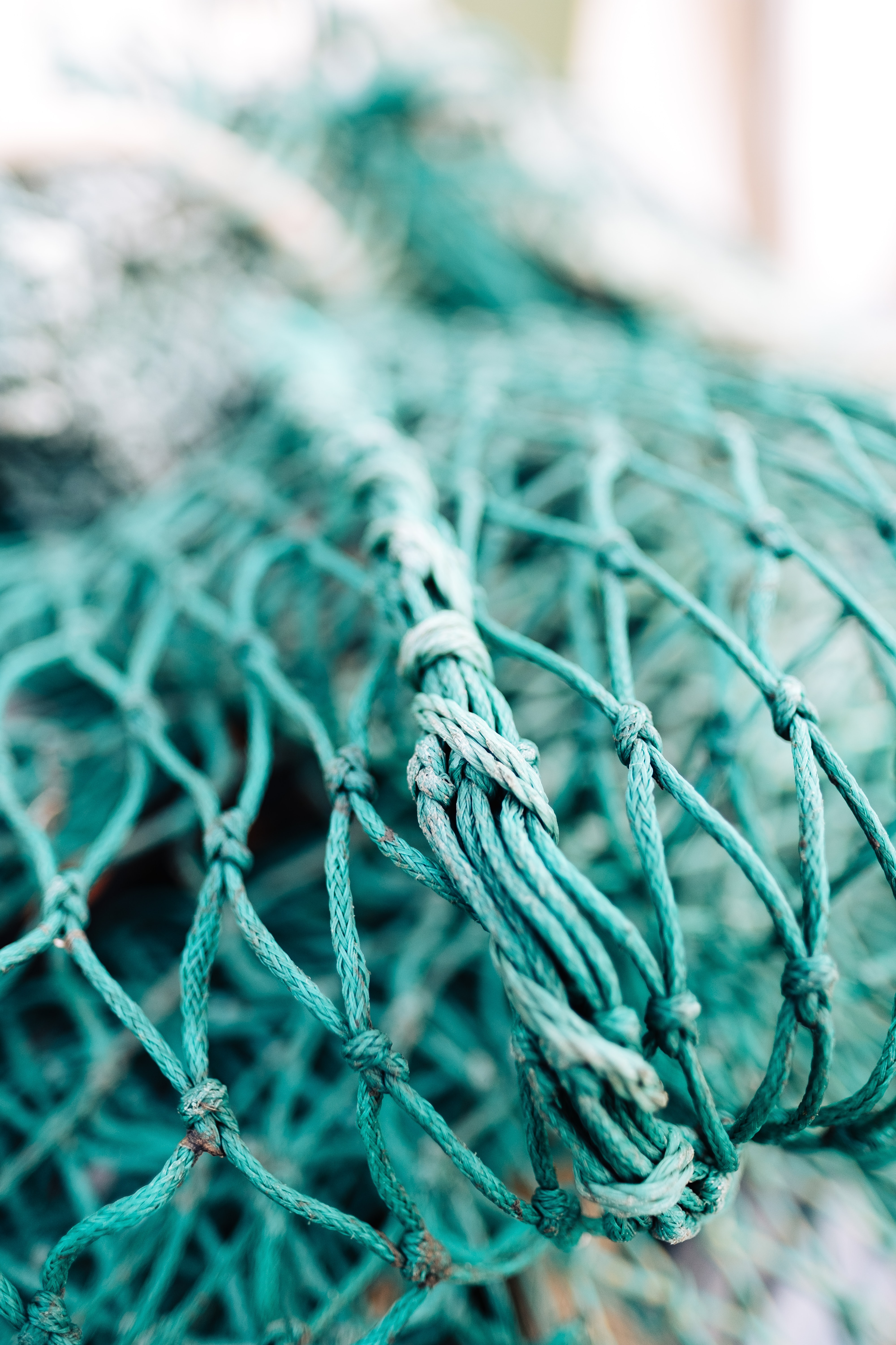 green fish net in shallow focus photography