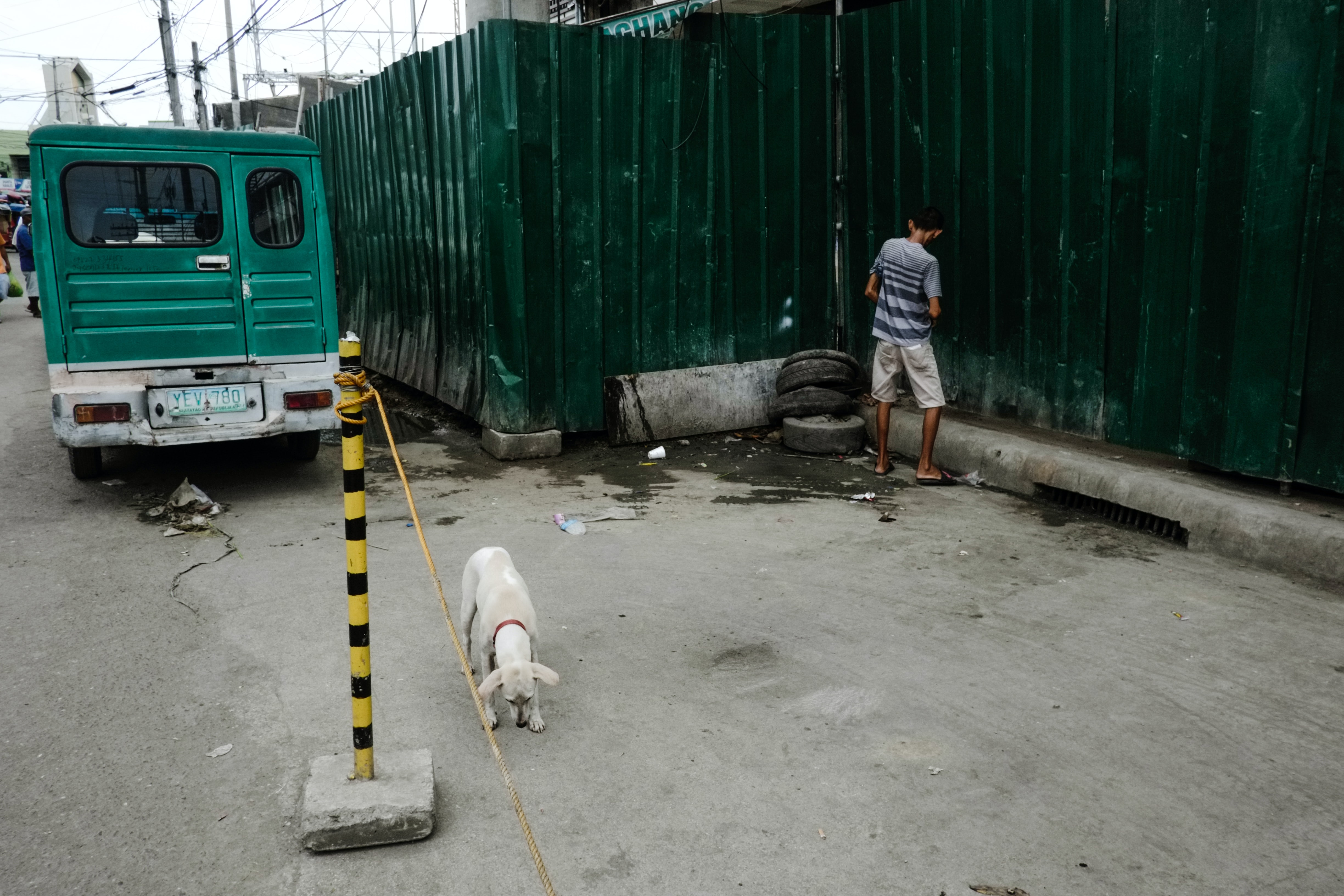 Urban scene in Tabunok of a green automobile, white dog, and young boy facing a wall