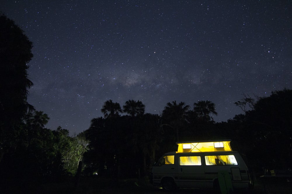 turned on house lights near trees