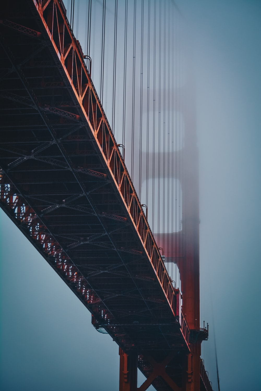focus photo of brown bridge