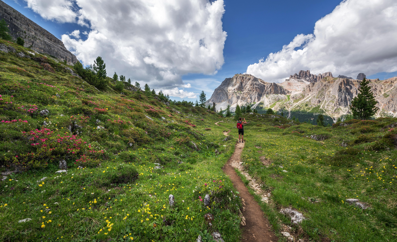 pathway between green grass fields