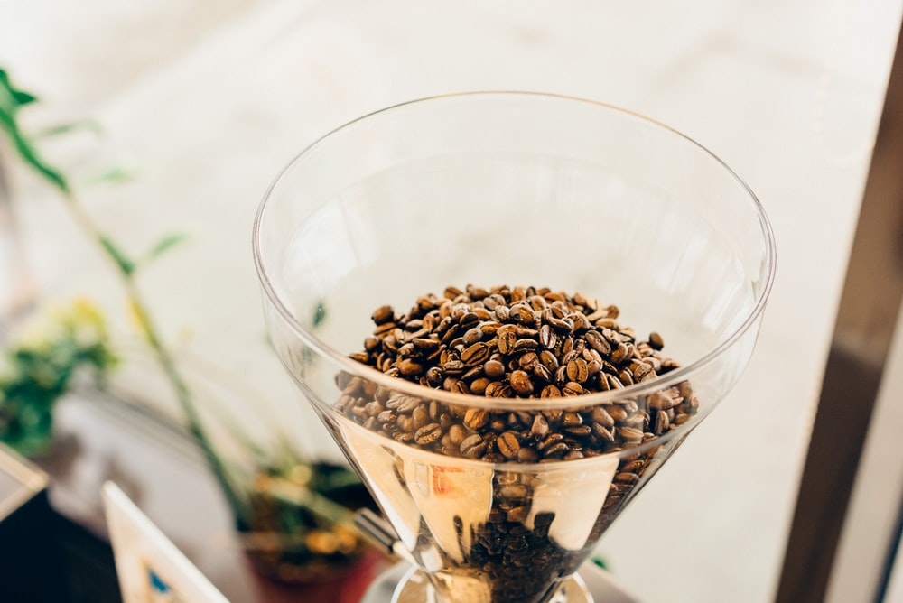 brown coffee beans on clear glass cup
