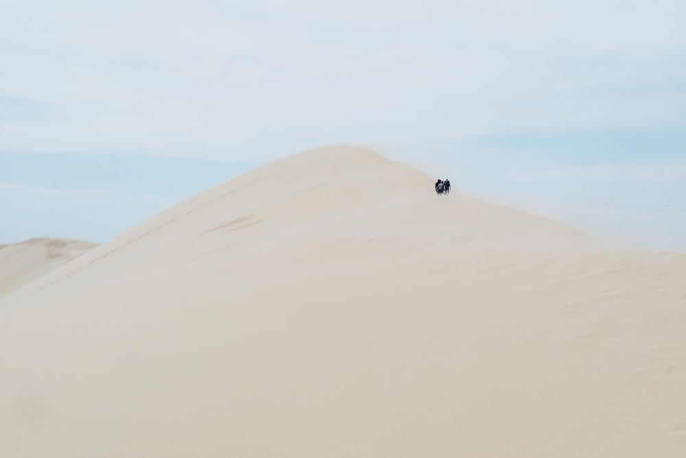 people standing on desert