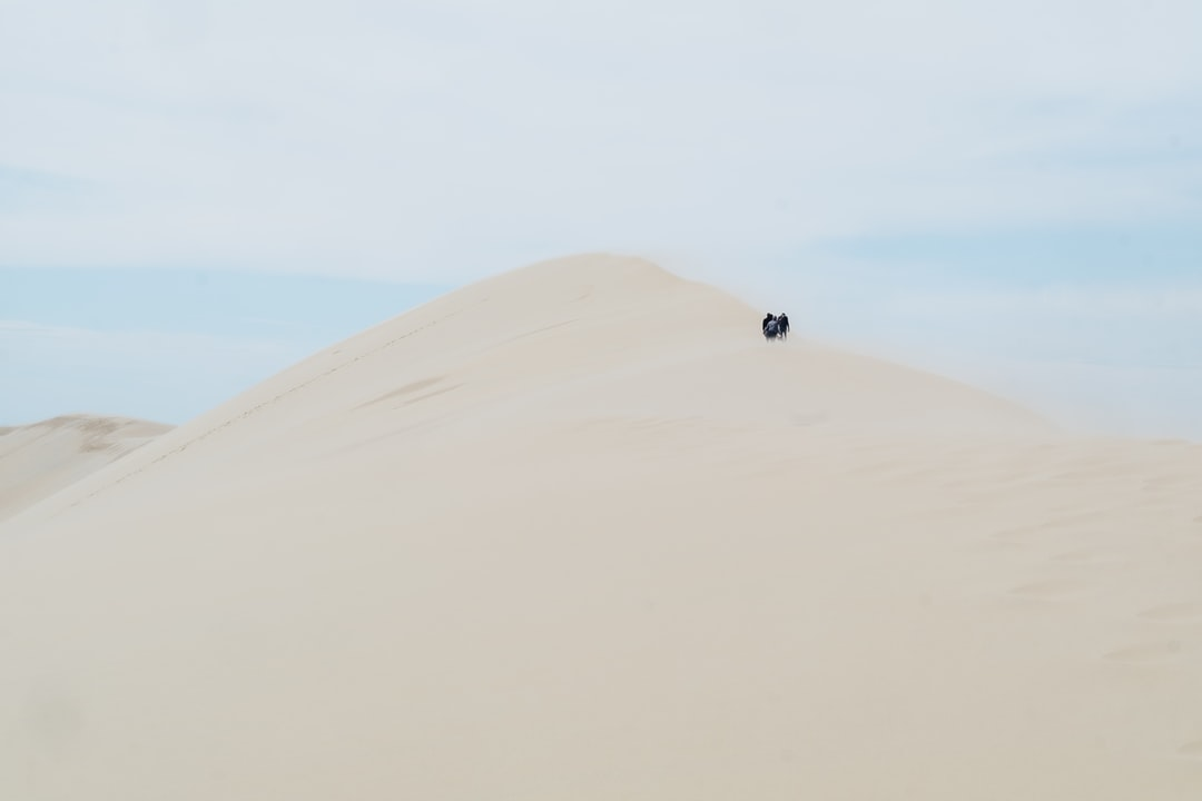 Walking at the top of the Dune du Pyla in France, where strong winds make the sand wip your face. You can feel the strength of the elements from up there.