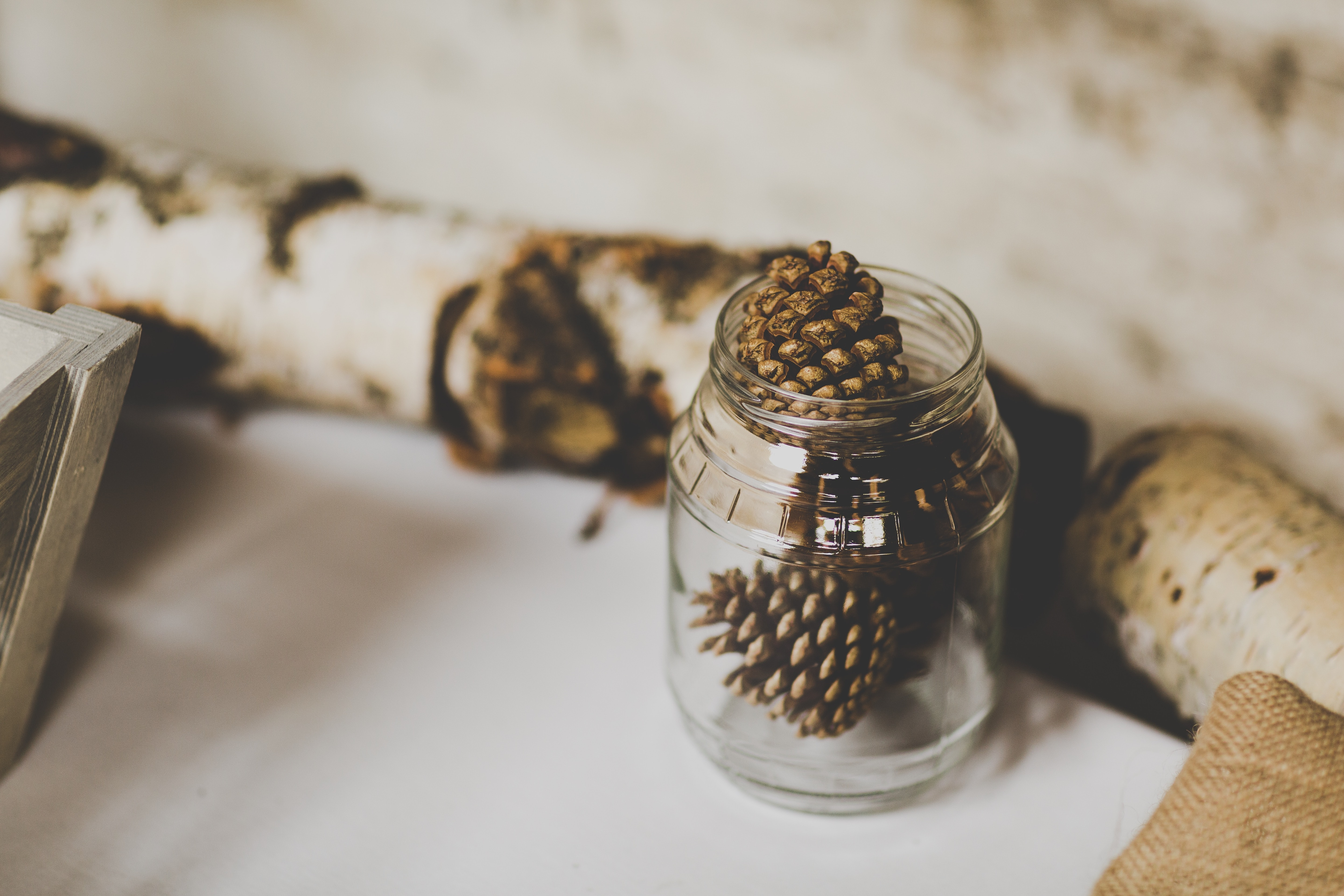 Rustic jar of pinecones by logs of birchwood
