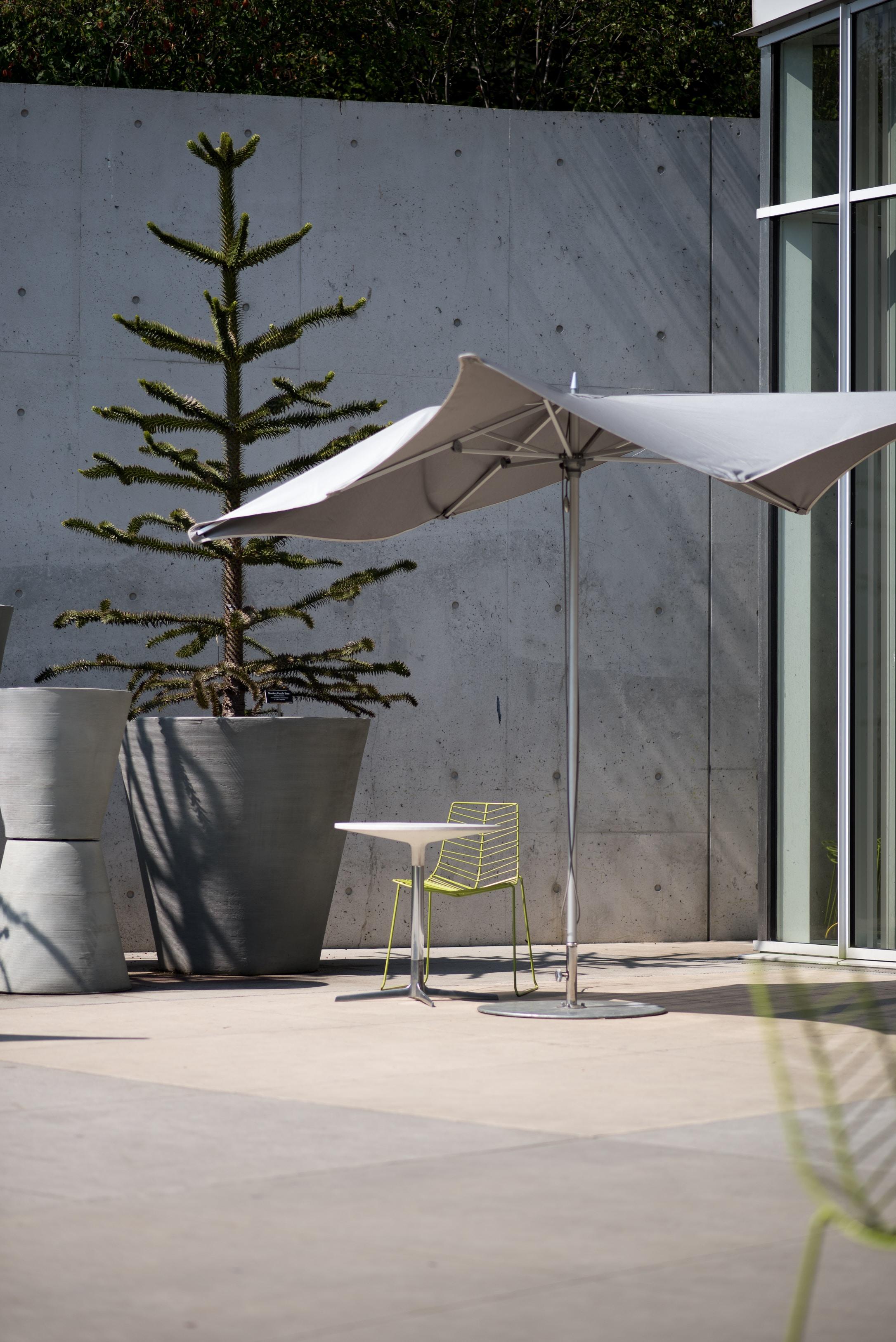 gray patio umbrella beside green pine tree