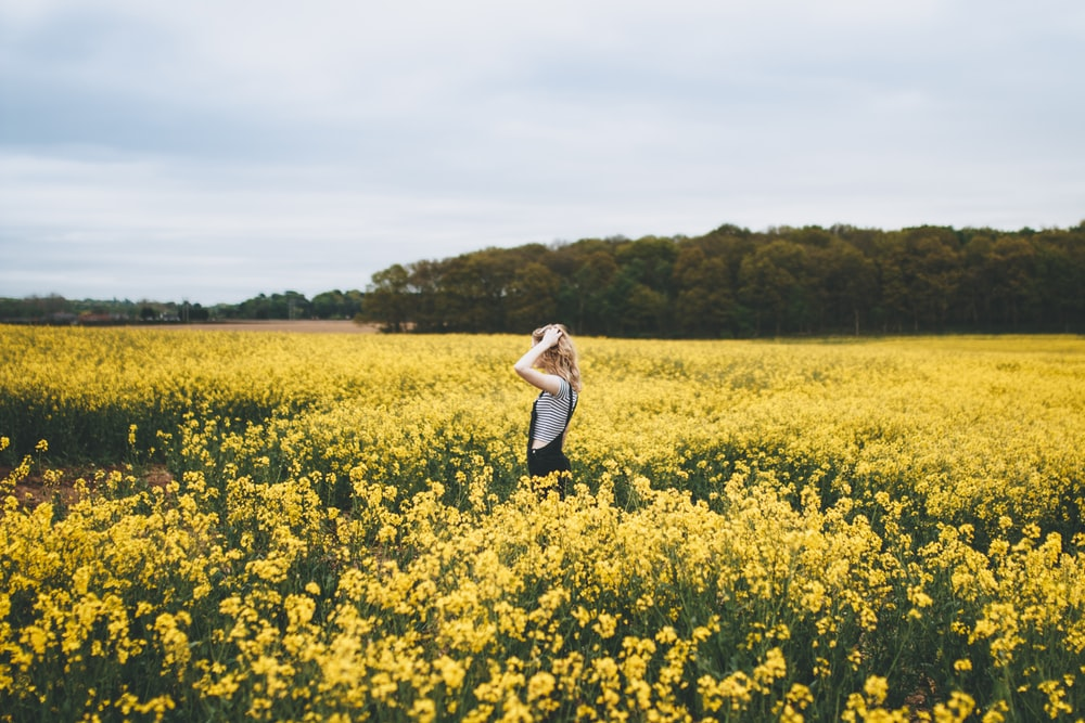 woman standing on bed of yellow flowers