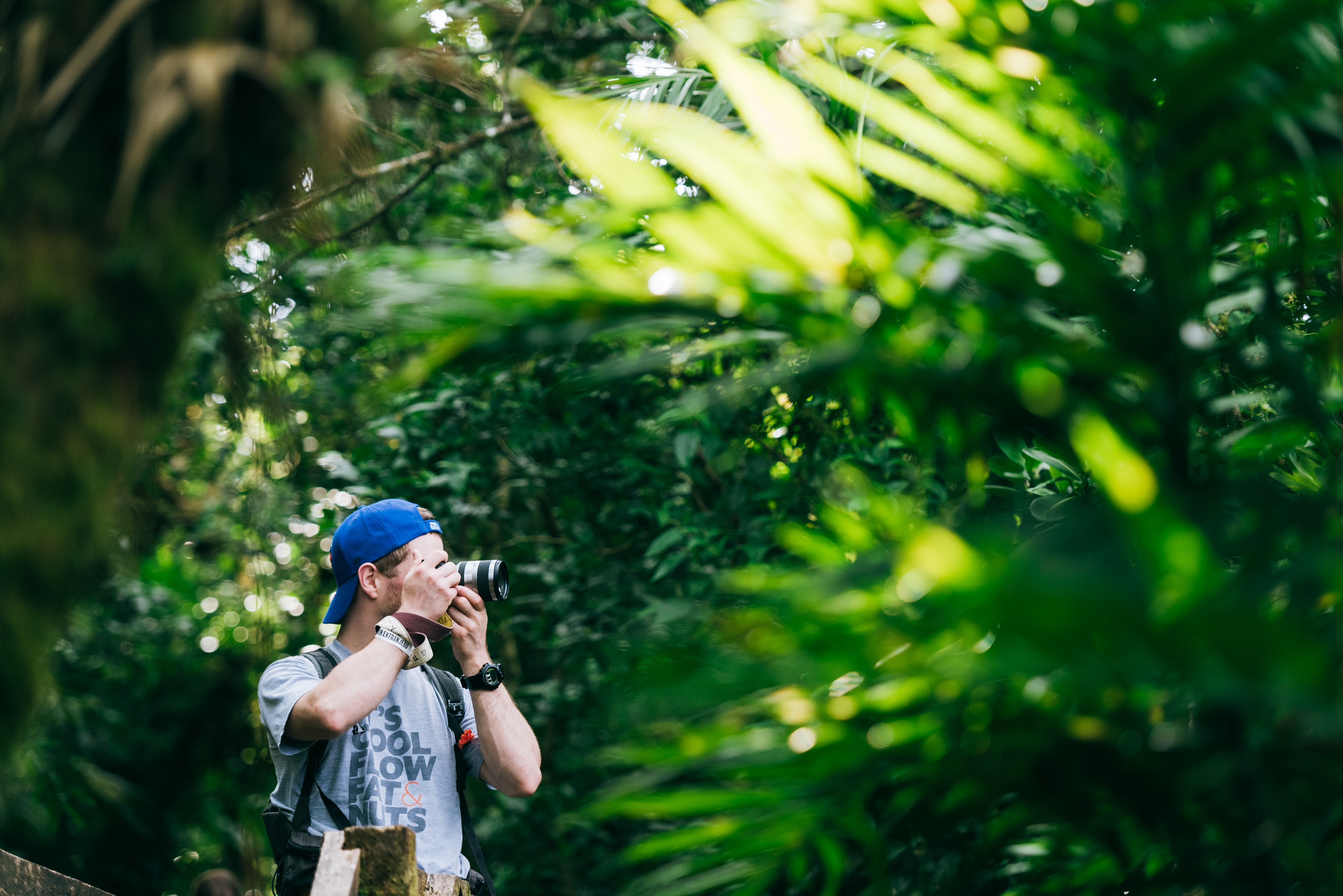selective focus photography of man taking picture of trees
