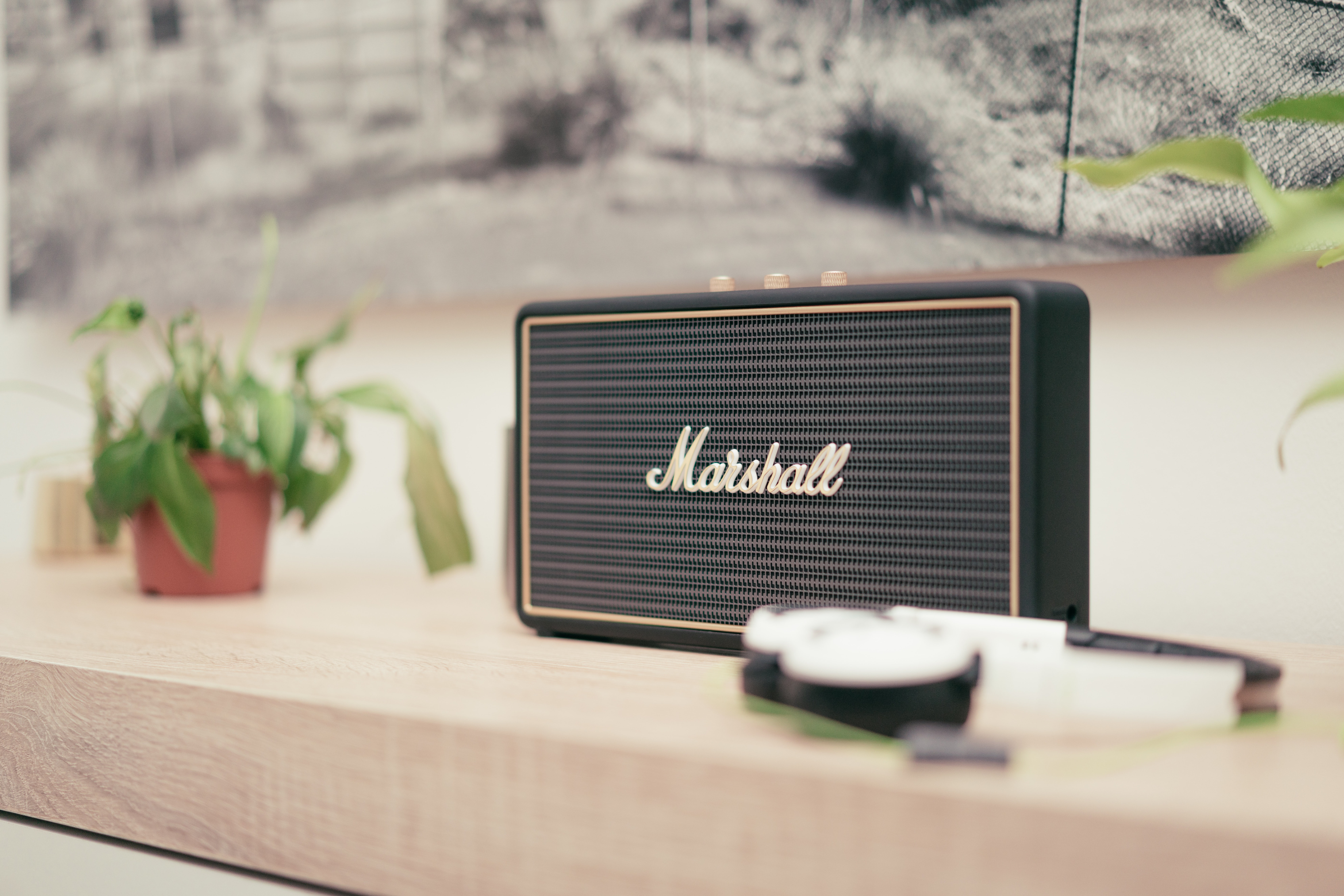 Small Marshall speaker on top of wooden table with plant and photo