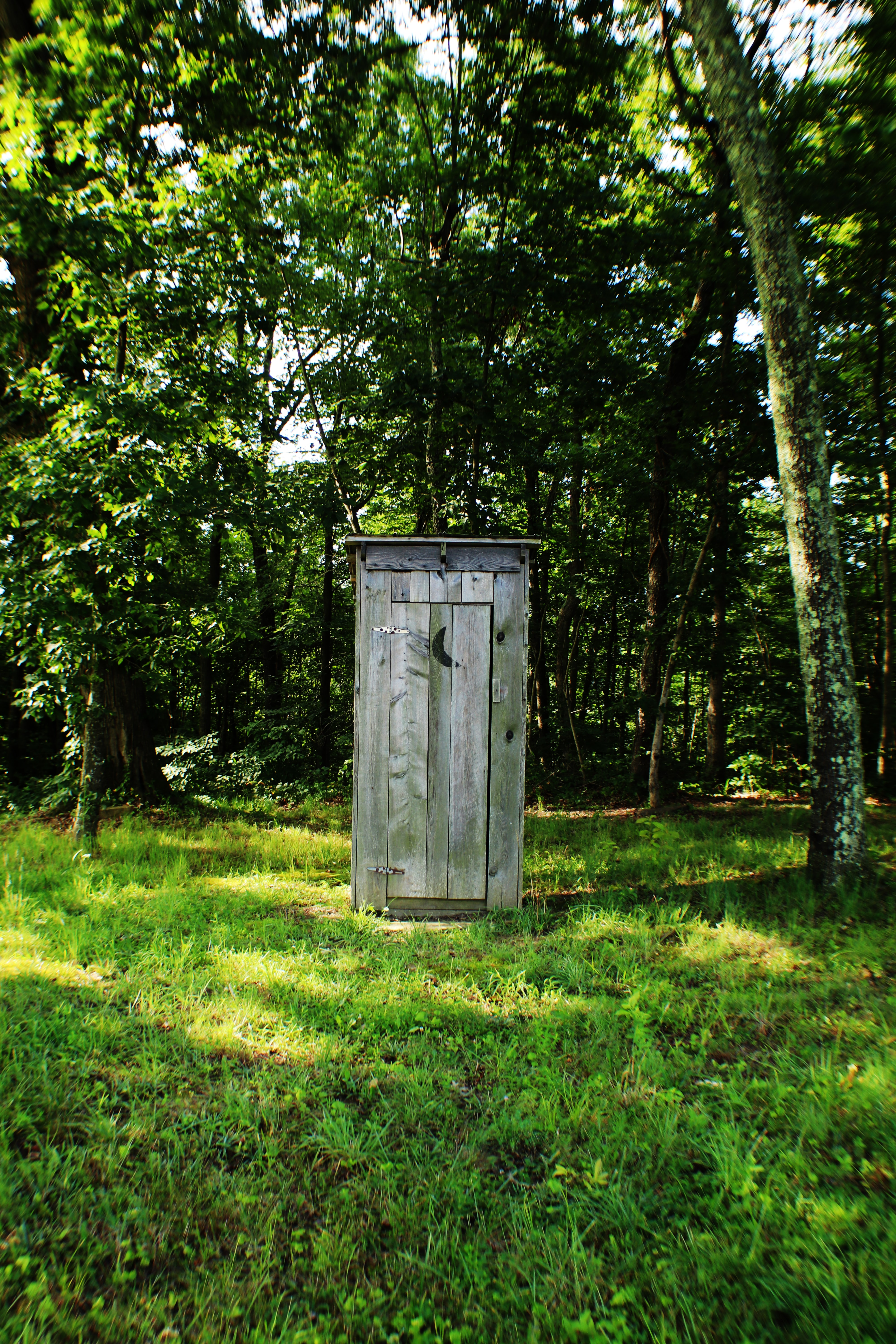 Wooden outhouse in a grassy forest field
