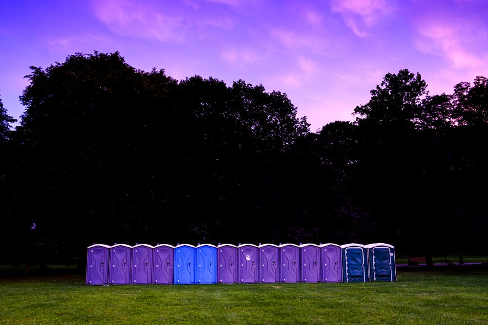 Potty Pictures [HQ] | Download Free Images on Unsplash
