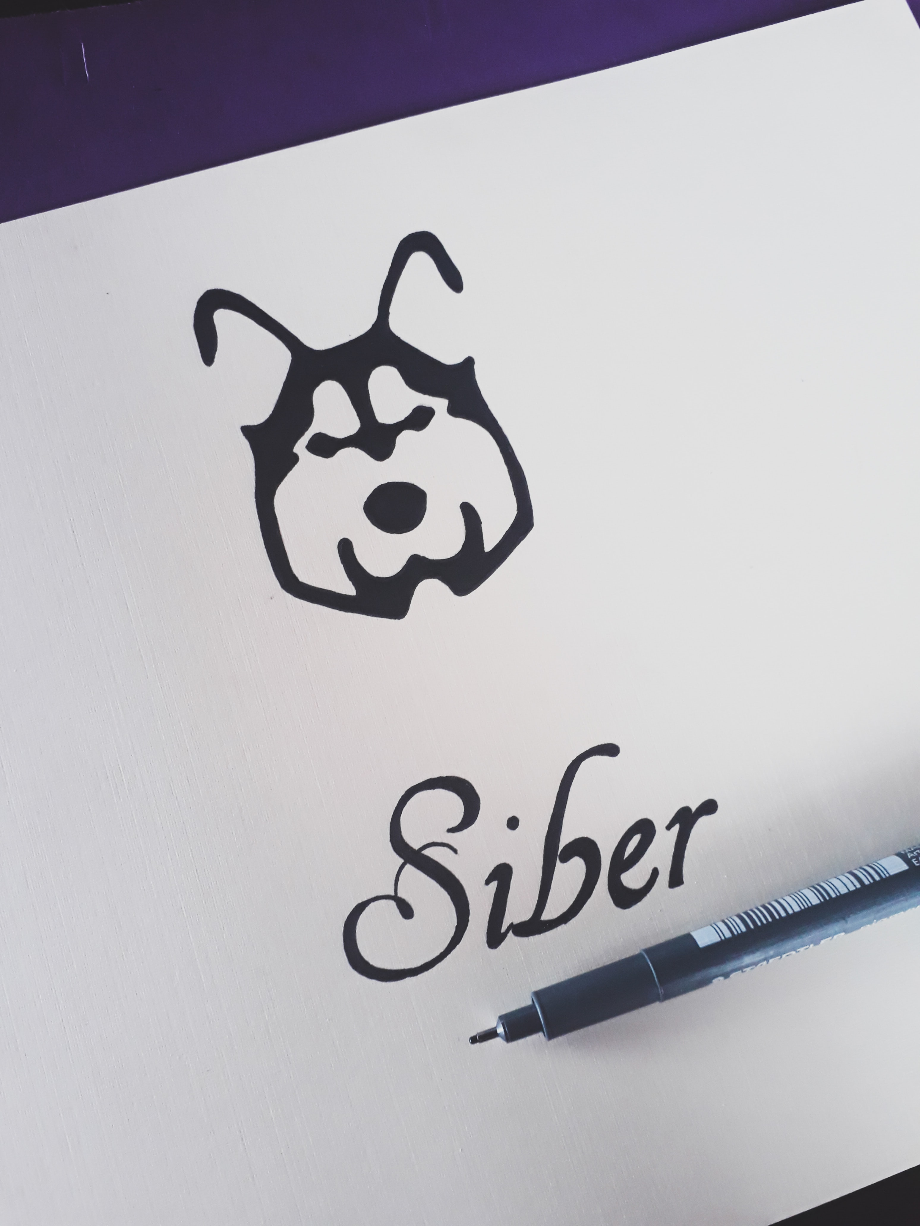 "An animal with ""Siber,"" written below on a piece of paper."