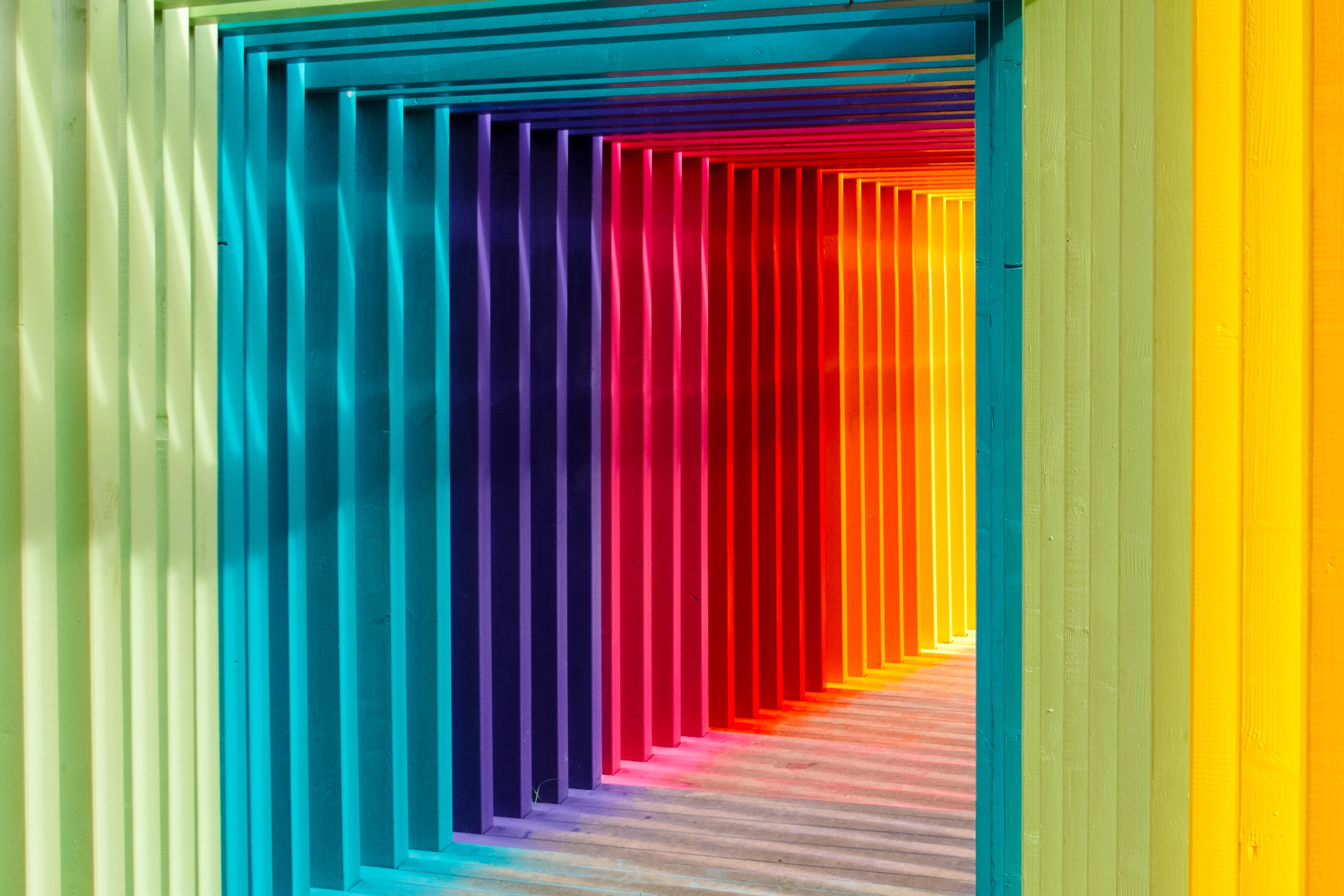 multicolored wall in shallow focus photography