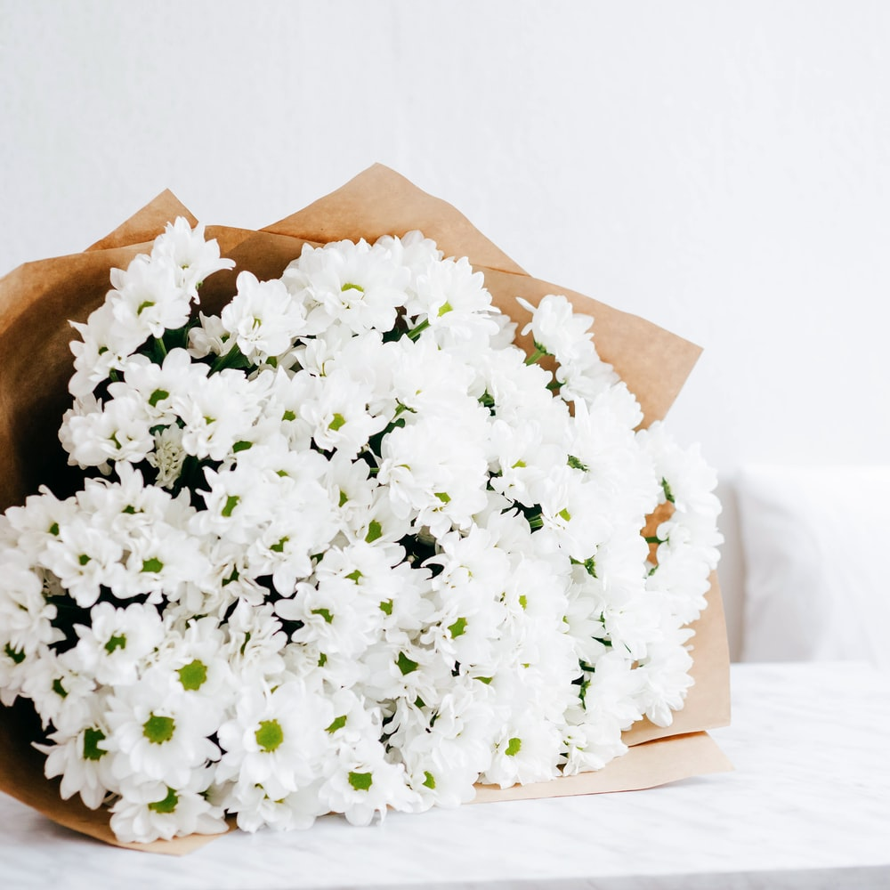selective focus photography of bouquet of white flowers