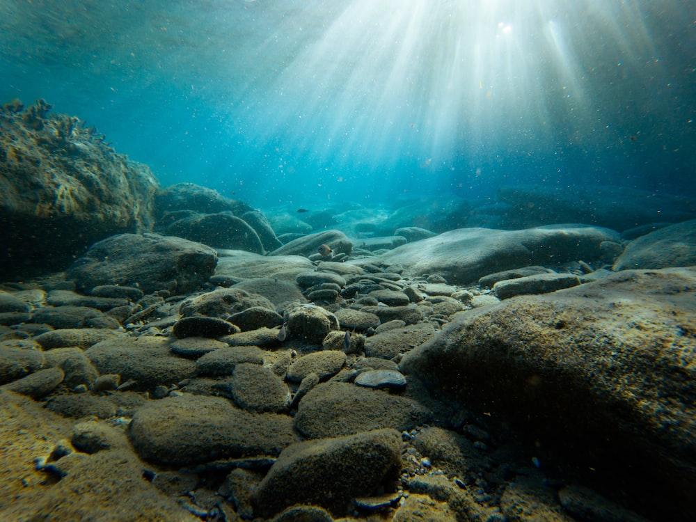 rocks on sea bed