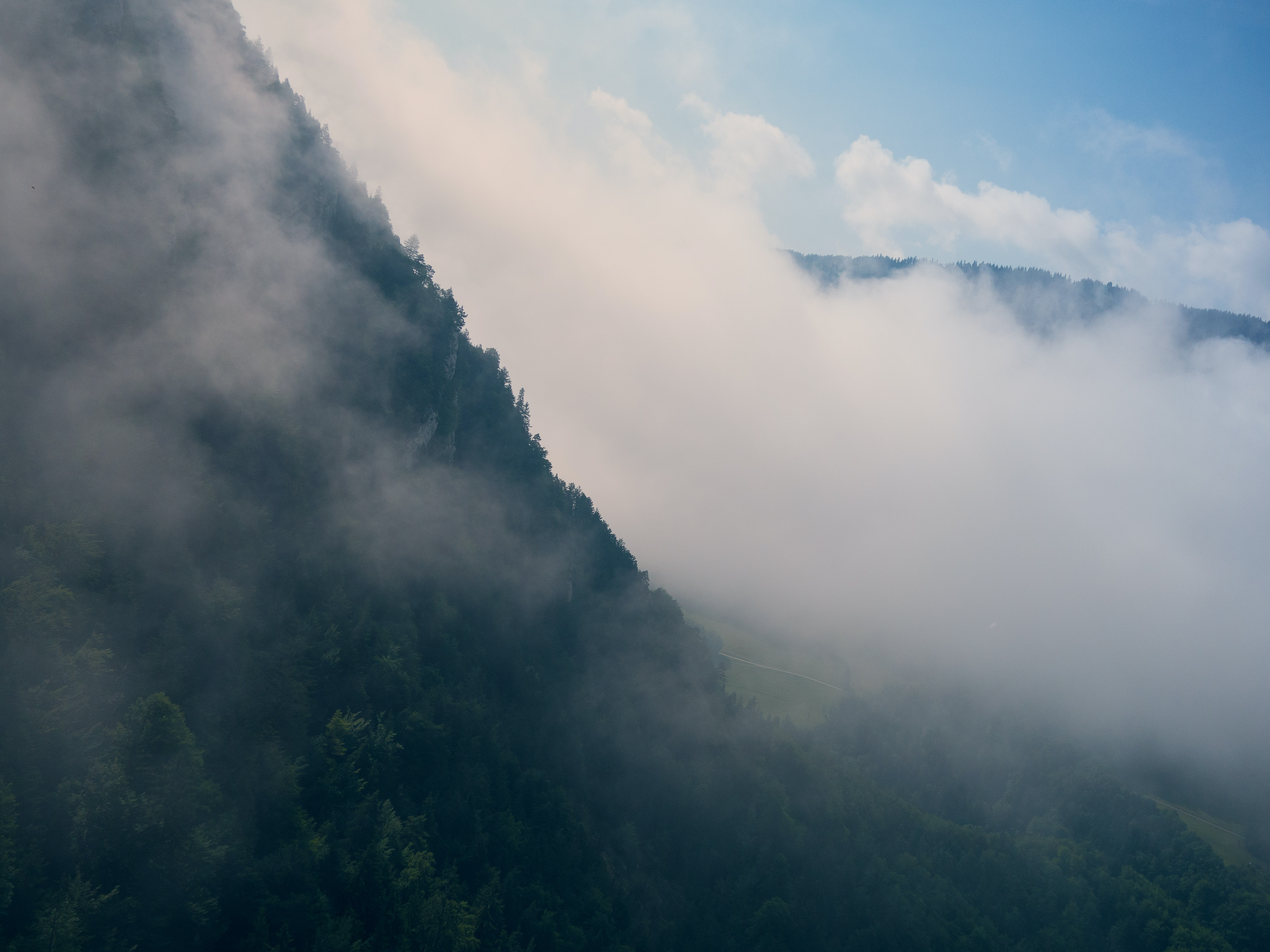 aerial photography of mountain covered with white fog