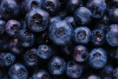 blueberry fruits blueberry teams background