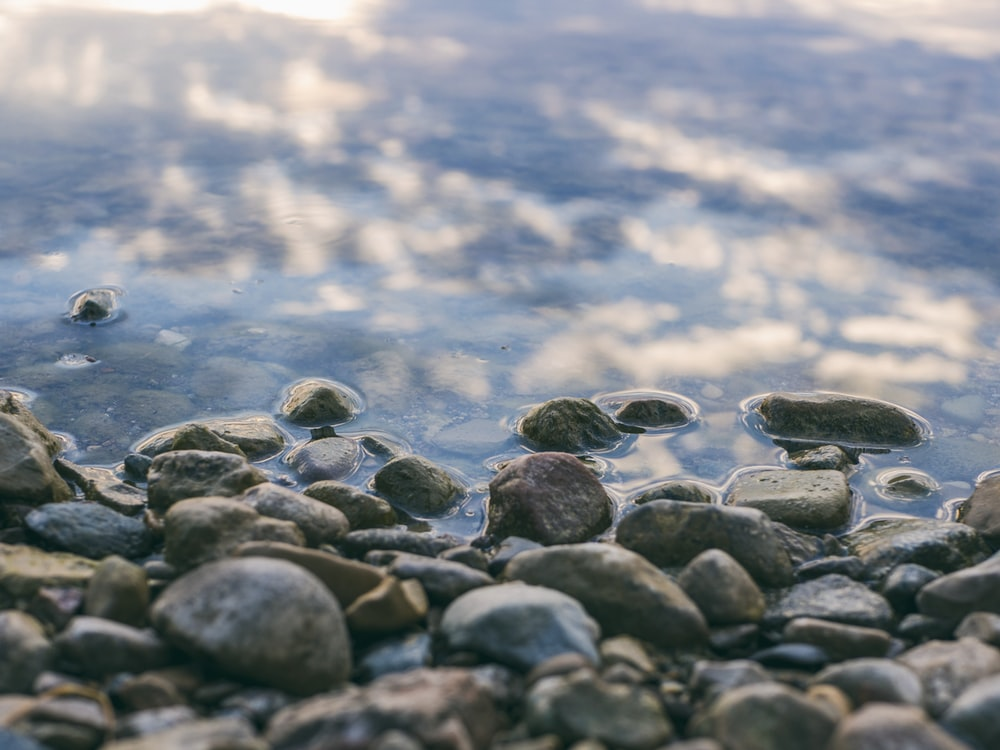 focus photography of stones near body of water