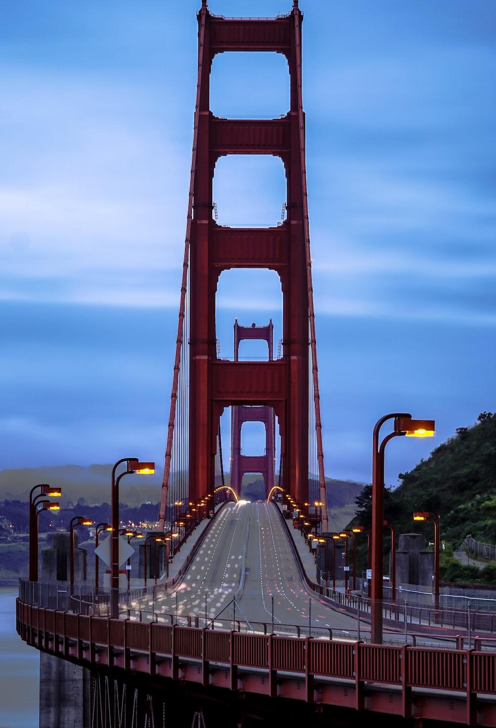shallow focus photo of maroon bridge
