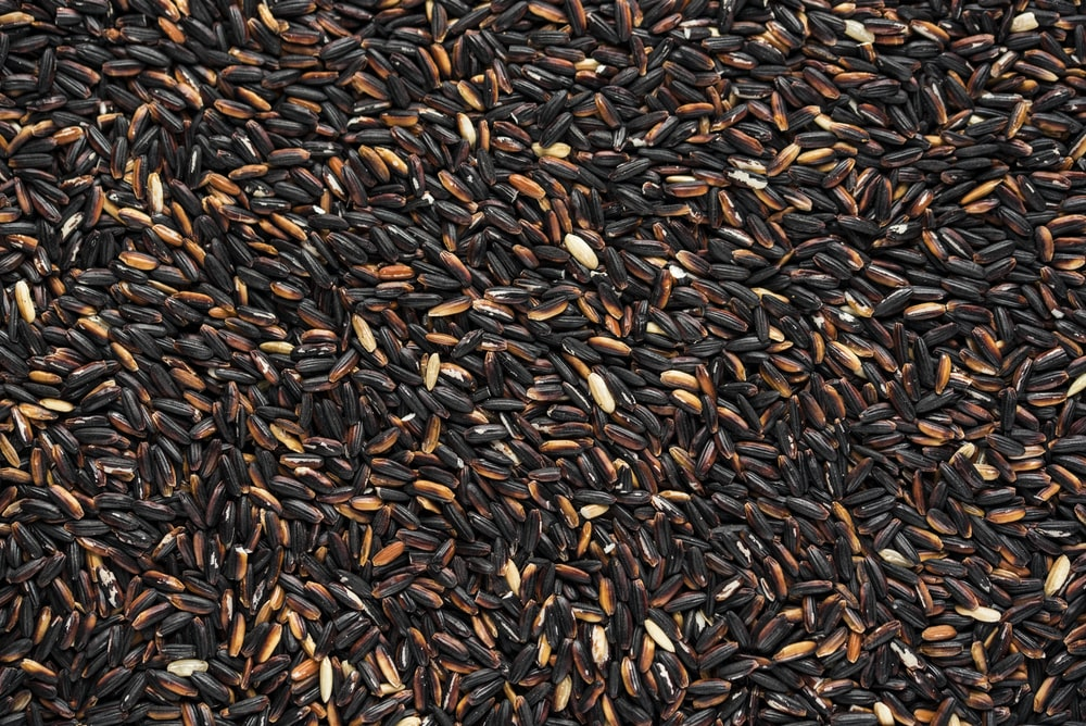 black and brown bean lot
