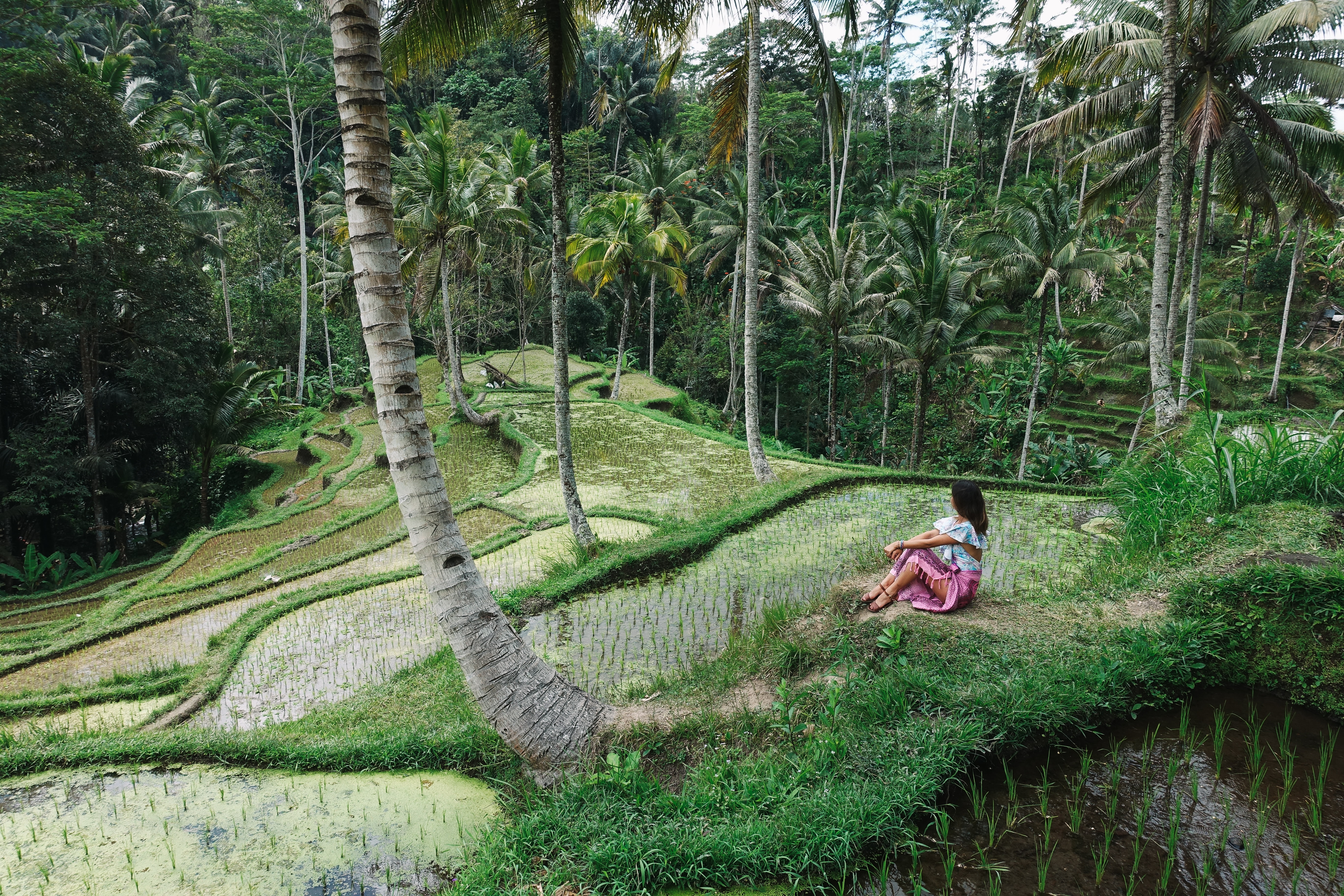 woman sitting on landscaped farm