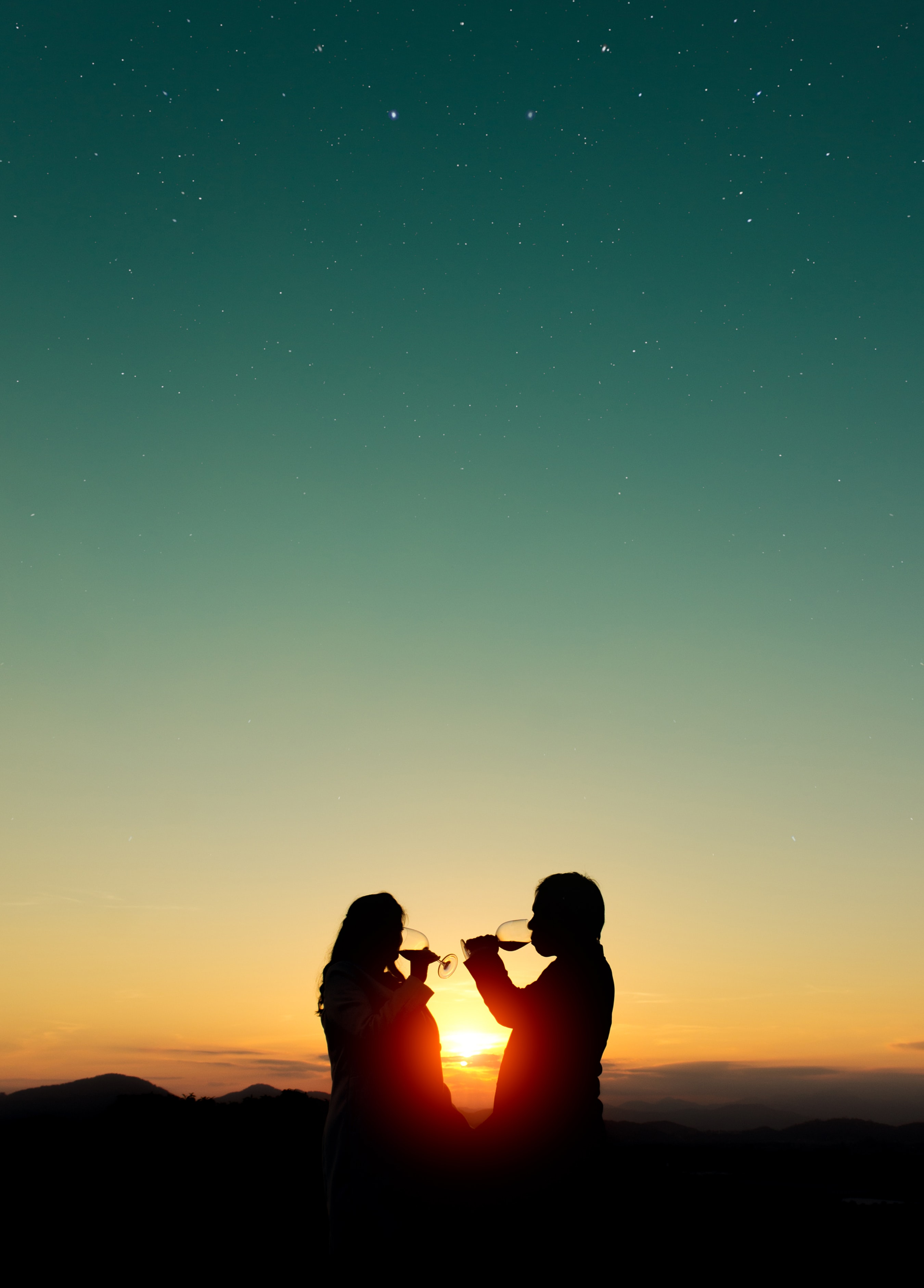 silhouette photo of man and woman holding wine glasses