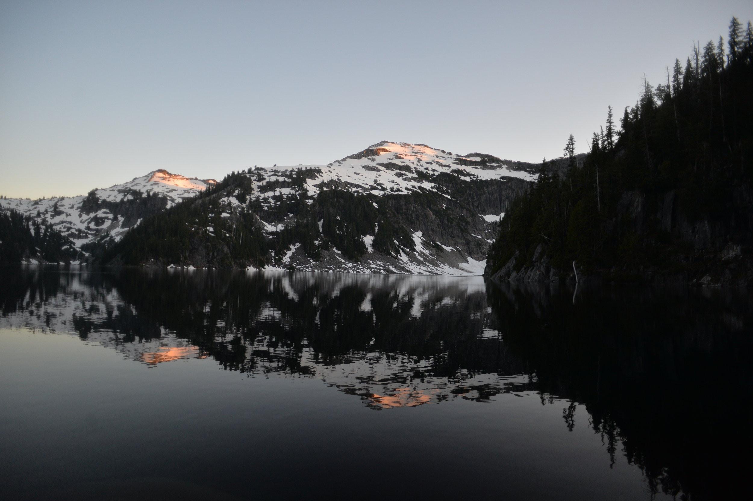 silhouette of trees near mountain