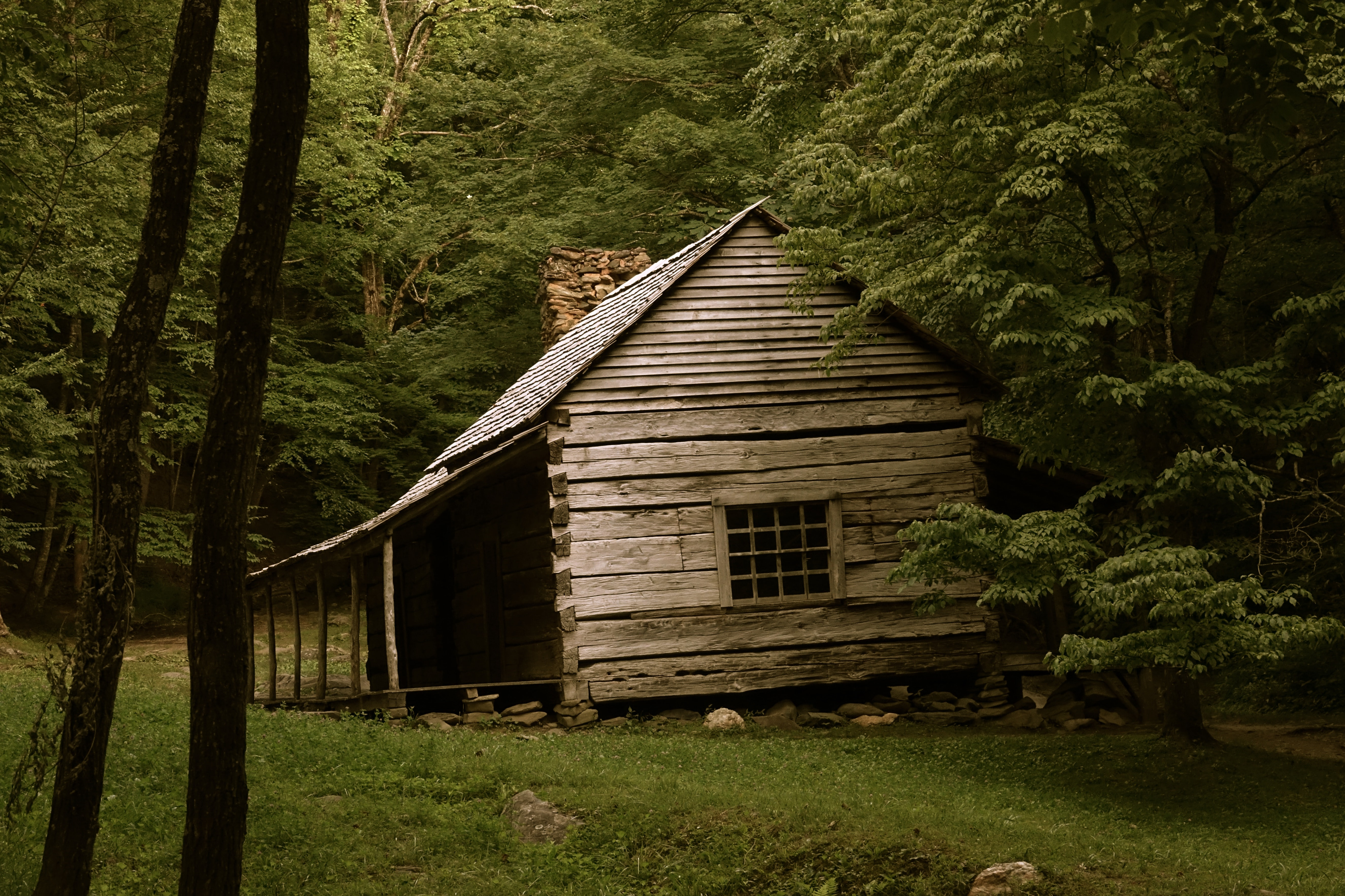 brown house on forest trees