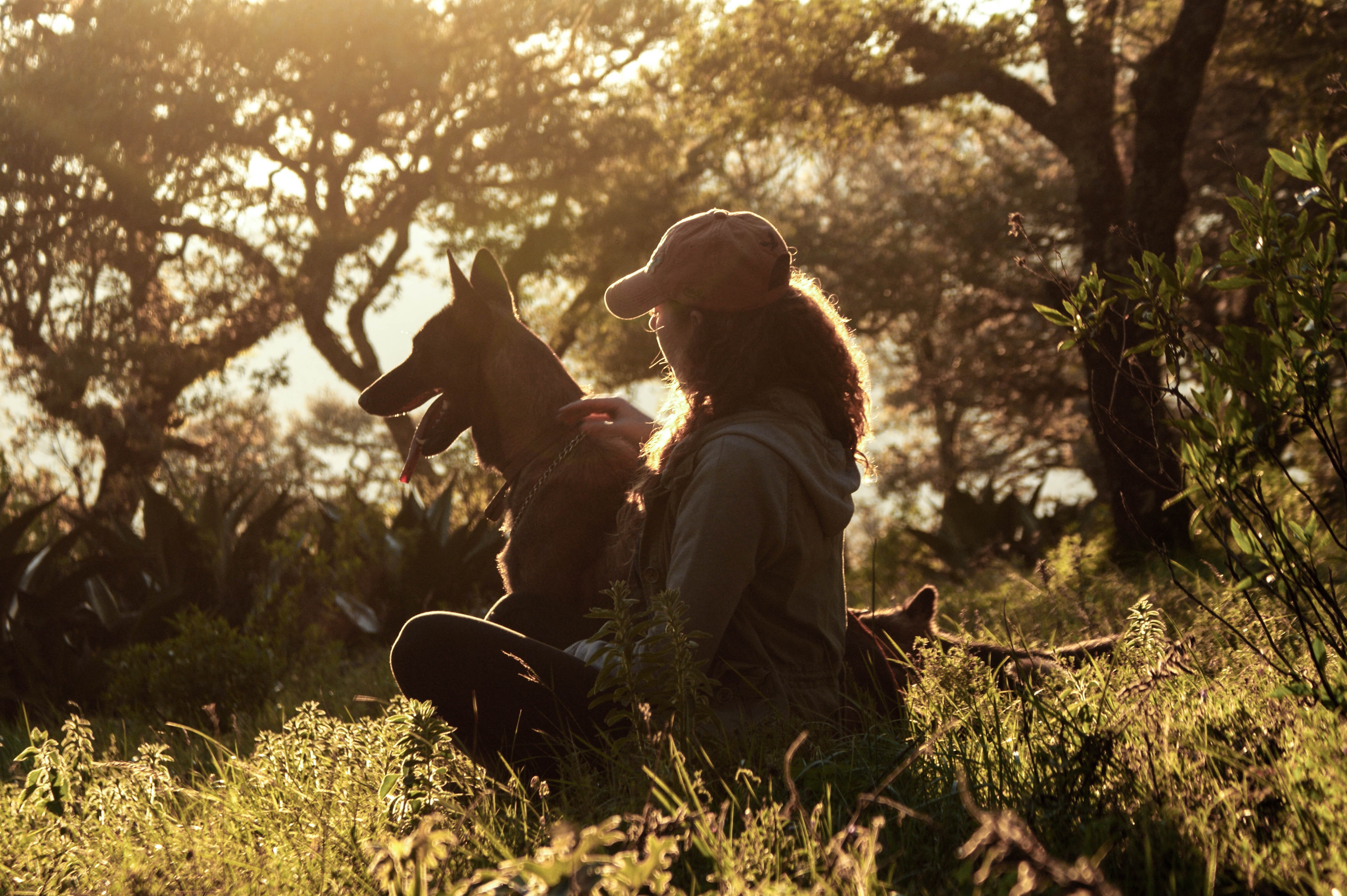 A woman in a cap sits with her dog on grass in front of sunny trees