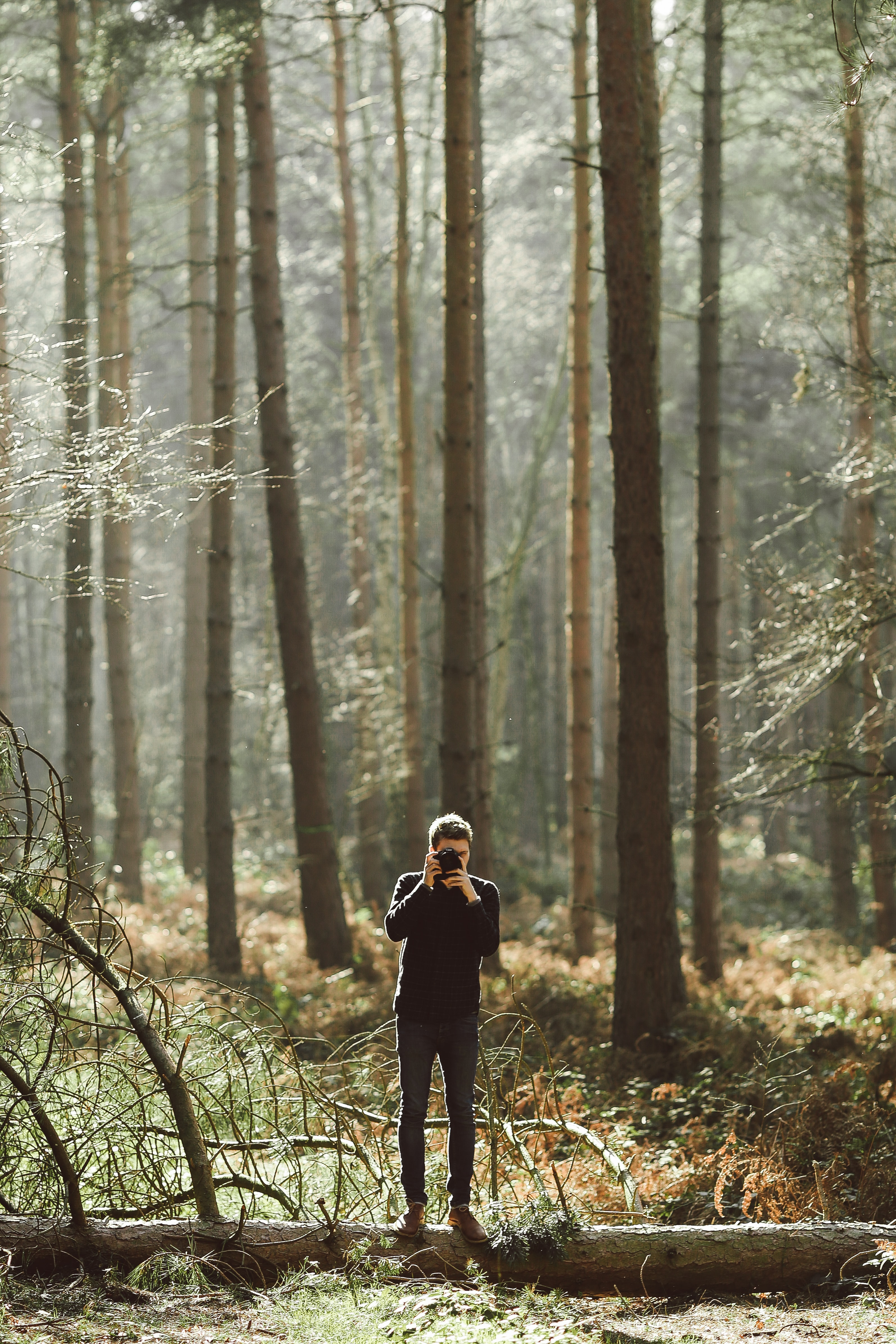 A photographer taking a picture in a forest
