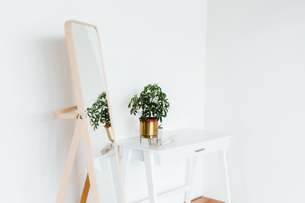 sustainable travel - potted plant on side table